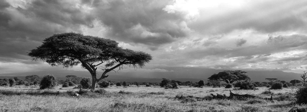 Afryka - krajobraz