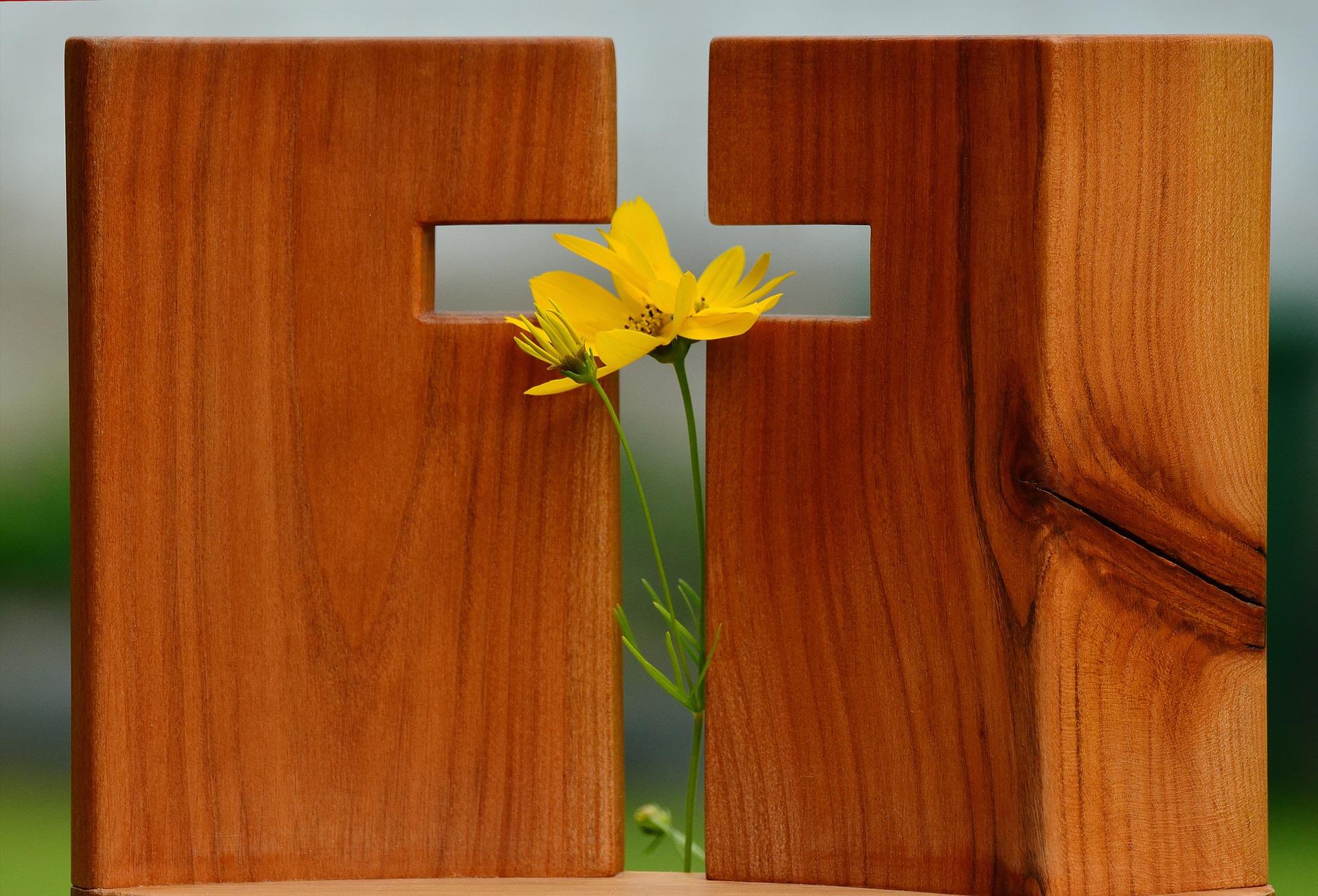 W Polsce duży odsetek ludzi deklaruje bycie katolikami. Wielu jest jednak niepraktykujących lub nie znających podstaw wiary. Dlatego zapraszamy do quizu o wiedzy na temat zmartwychwstania Jezusa i Wielkanocy, największego święta katolickiego.