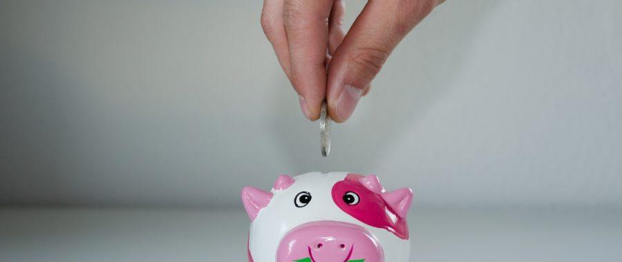 świnka skarbonka oszczędzanie