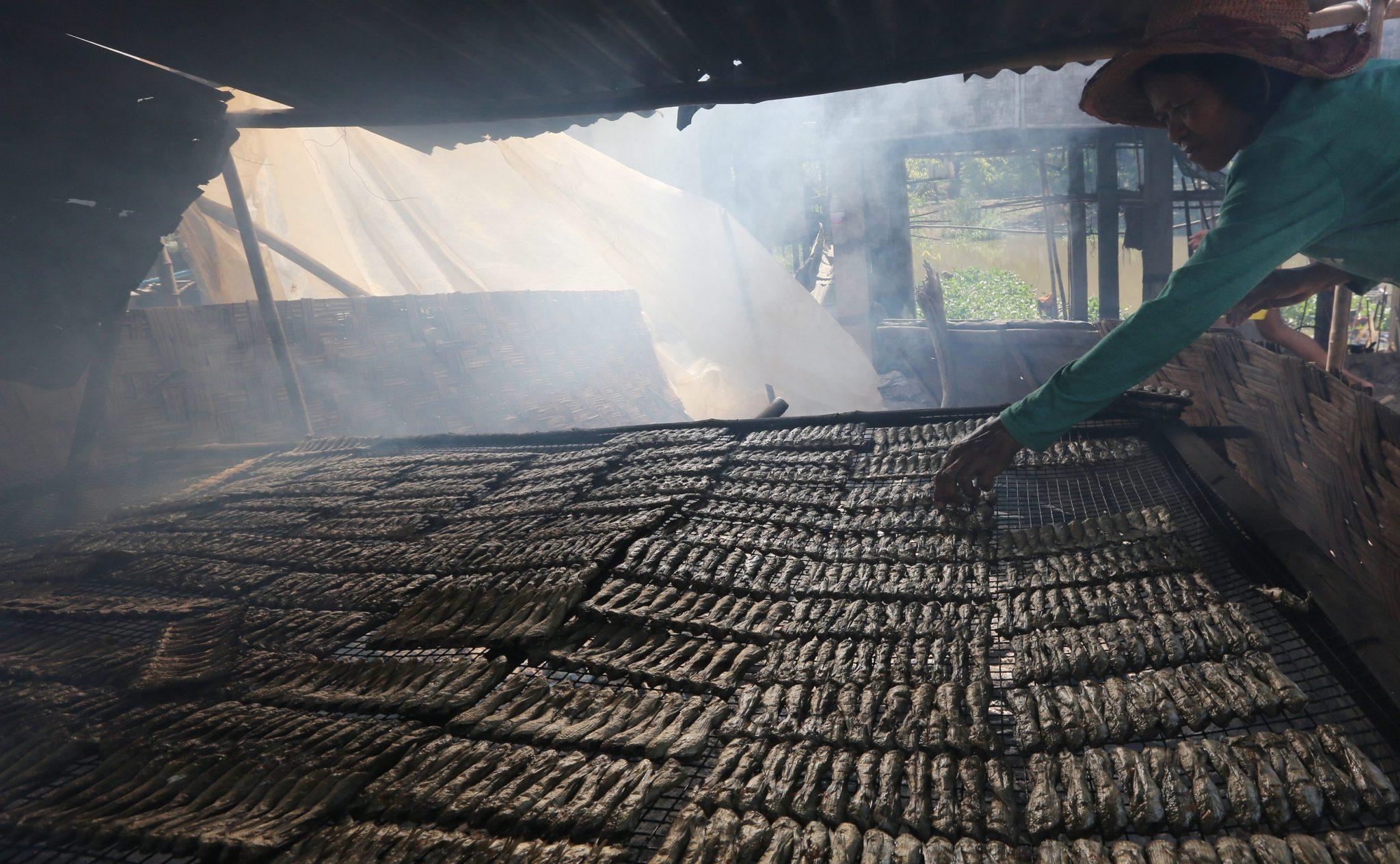 Kambodża: początek sezonu odłowu ryb w wodach słodkowodnych (foto. PAP/EPA/KITH SEREY)