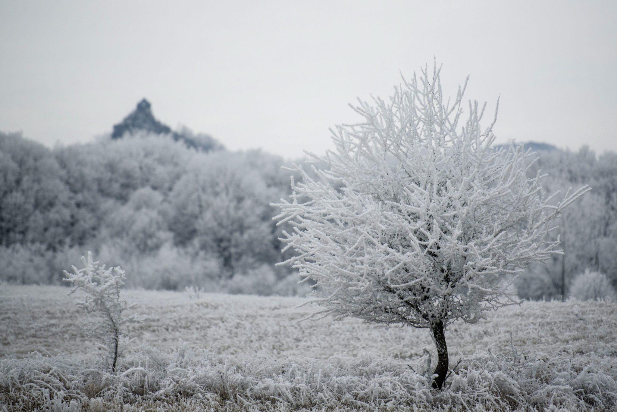 Węgry: zima na Węgrzech, zdjęcie spod miejscowości  Salgotarjan, 100 km na północ od Budapesztu (foto. PAP/EPA/PETER KOMKA)