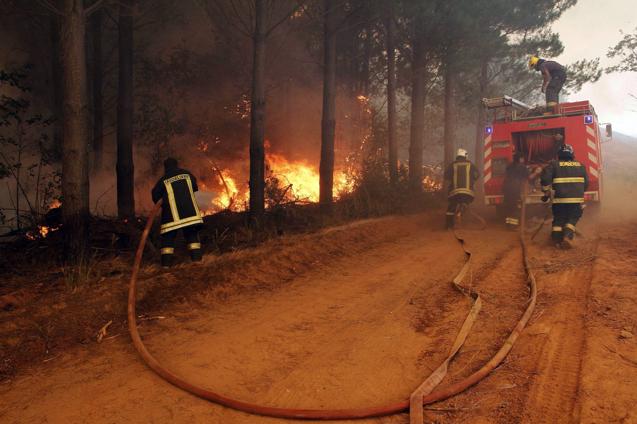 Chile: akcja gaszenia lasów w okolicach Cauquenes (foto. PAP/EPA/DRAGOMIR YANCOVIC)