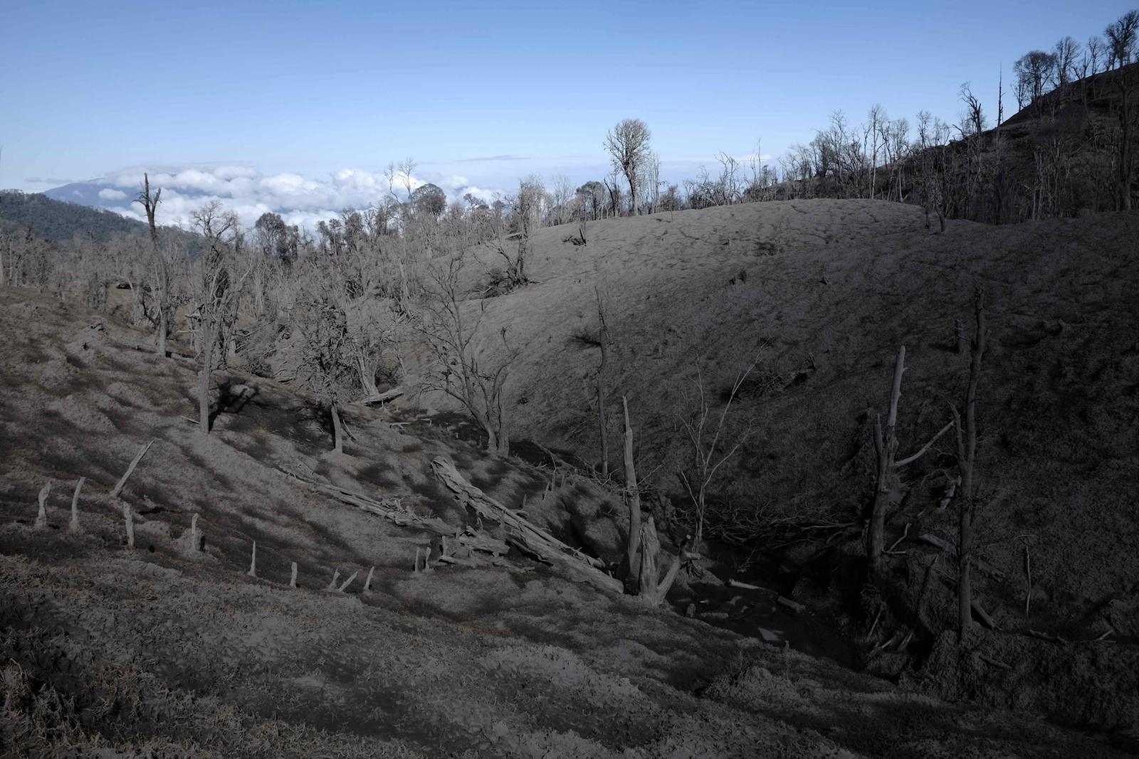 Krajobraz zniszczony przez pył pochodzący z wulkanu Turrialba w Kostaryce.