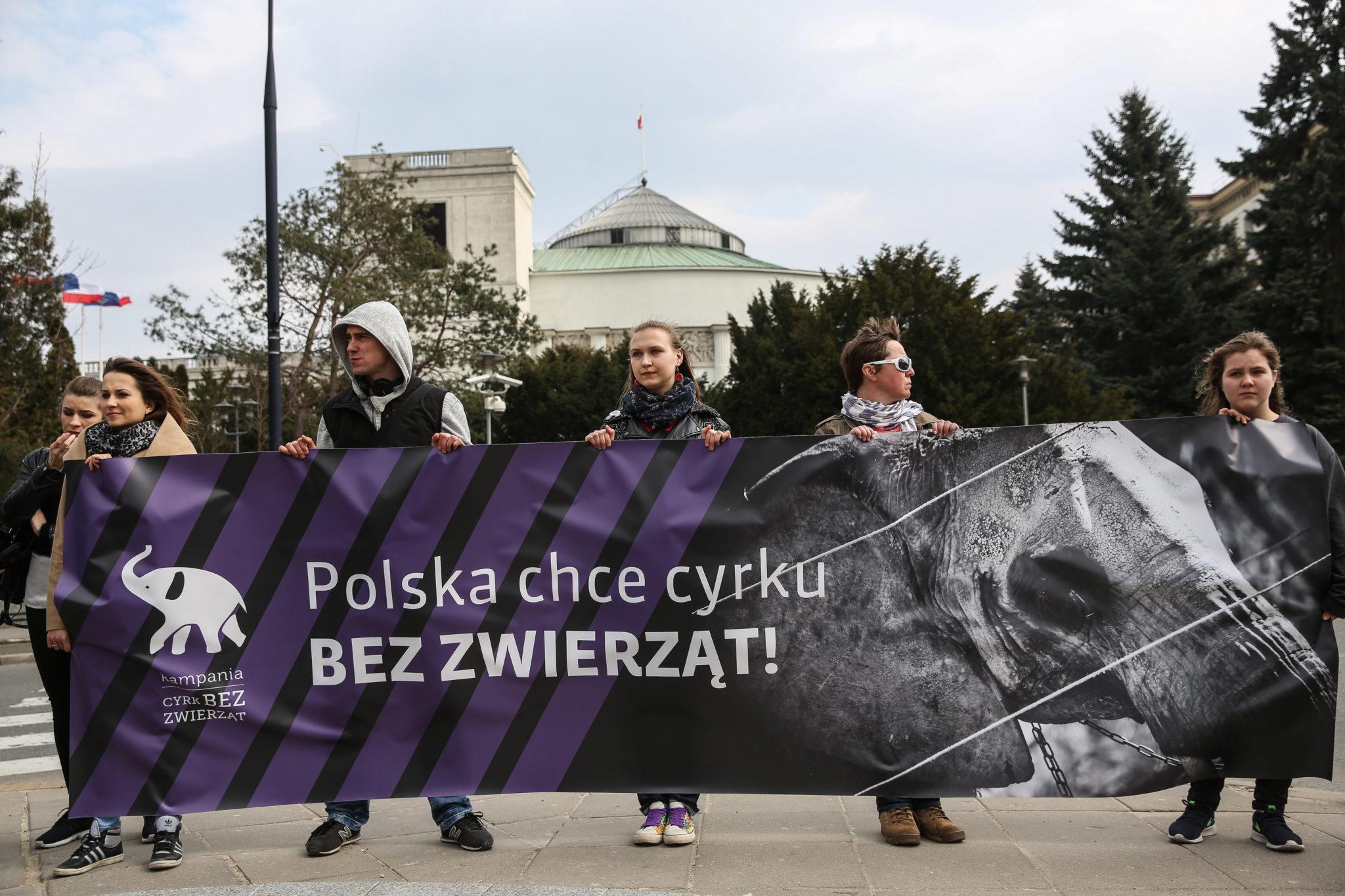 Polska: protest przeciwko występowaniu zwierząt w cyrku w Warszawie (foto. PAP/Rafał Guz)