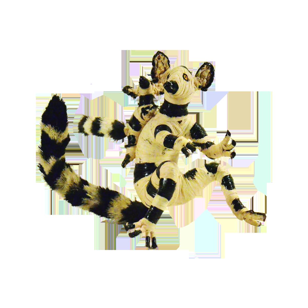 lemur_mama