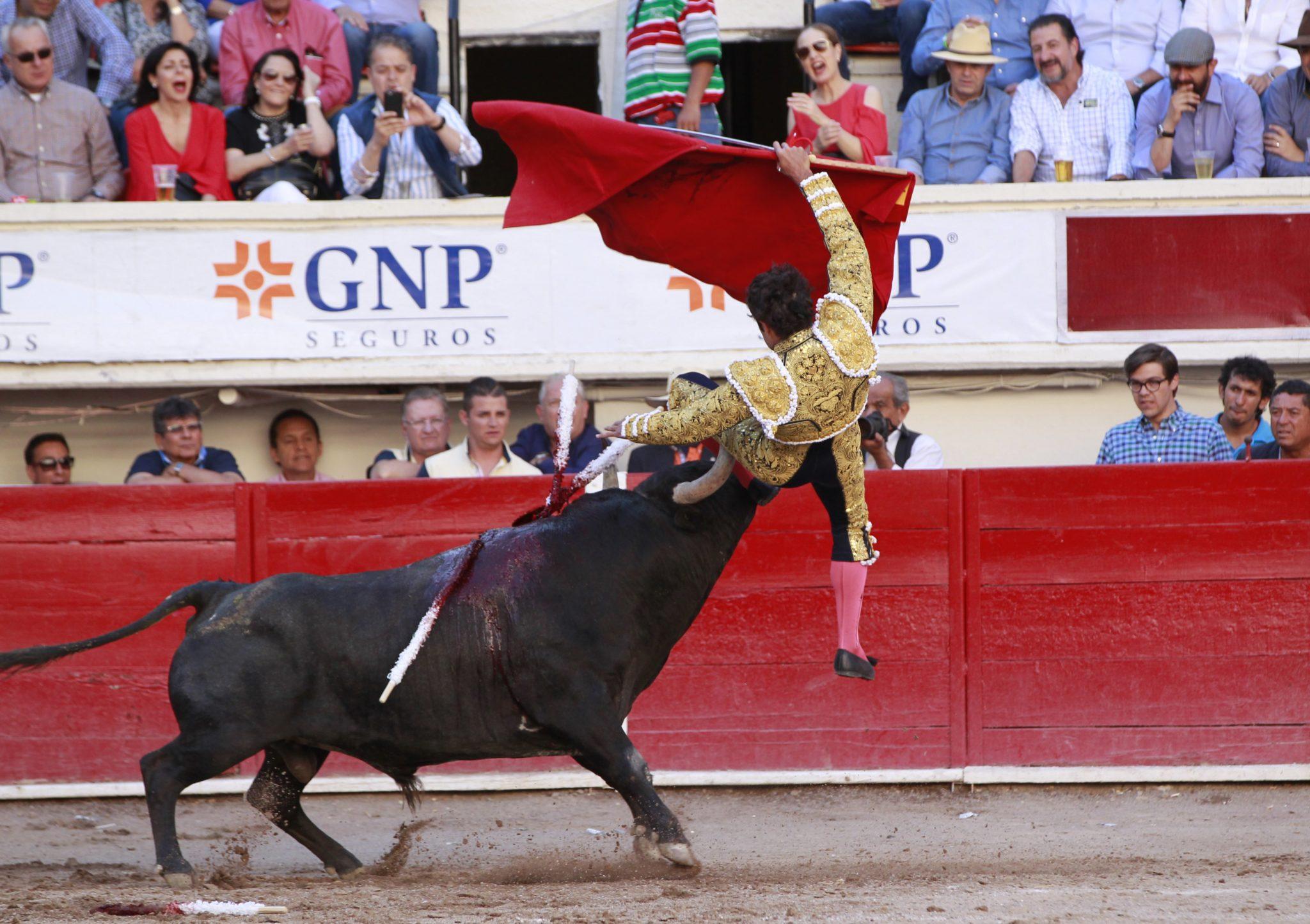 Meksyk: inauguracja Narodowego Festiwalu Św. Marka w Agiascalientes, podczas którego tradycyjnie odbyły się walki  byków (foto. PAP/EPA/MARIO GUZMAN)