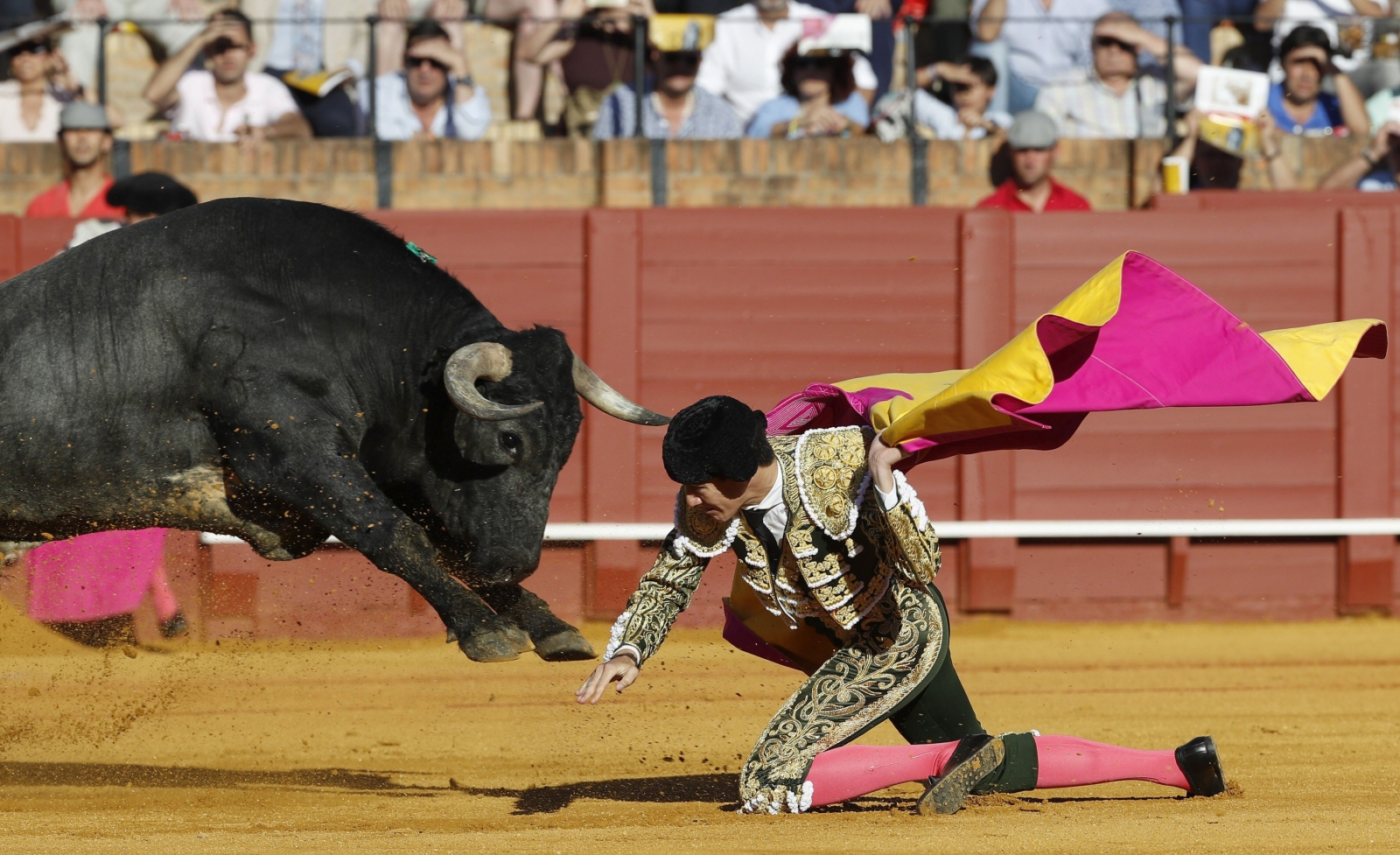 Hiszpański torreador Esau Fernandez w czasie swojej walki z bykiem, Sewilla, Hiszpania.