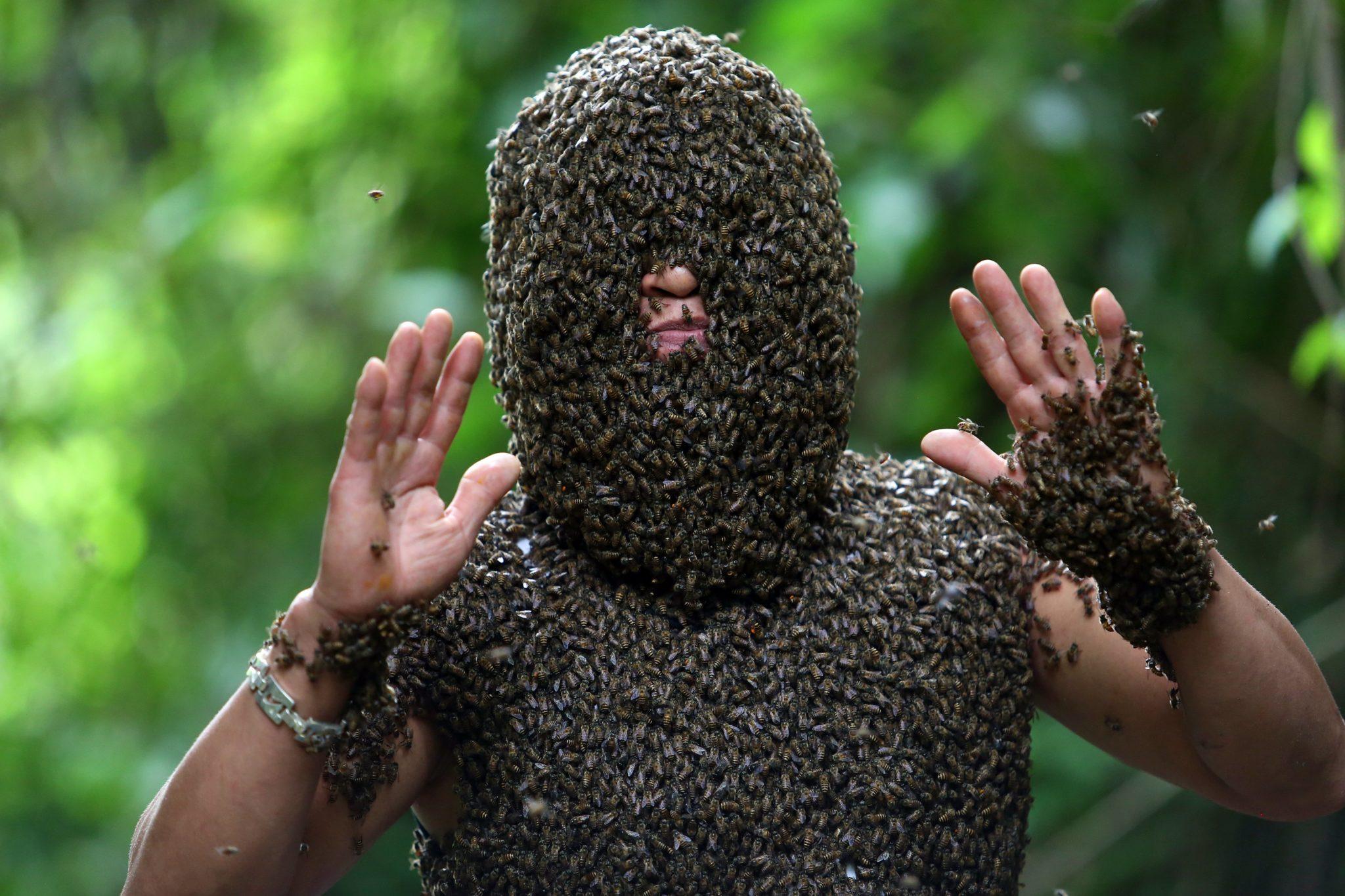 Festiwal pszczół w Wietnamie.
