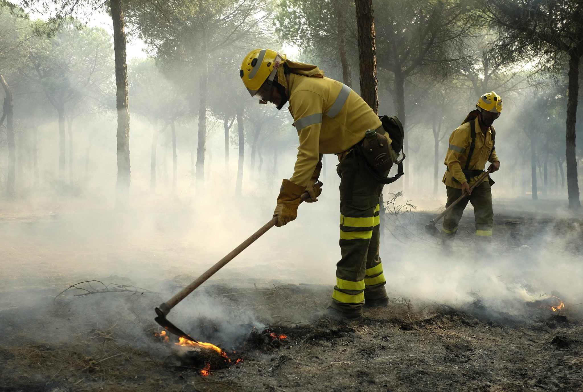 epa06050843 Firefighters work to extinguish the forest fire in Mazagon, Huelva, Spain, 25 June 2017 (issued 26 June 2017). Spanish firefighters and emergency services fight the blaze that broke out at 21:30 local time on 24 June near the Donana nature reserve which is now threatened due to its close proximity. More than 2,000 people were evacuated from their homes, media reports state. The main roads have been reopened while the fire continues active on 26 June 2017.  EPA/JULIAN PEREZ Dostawca: PAP/EPA.