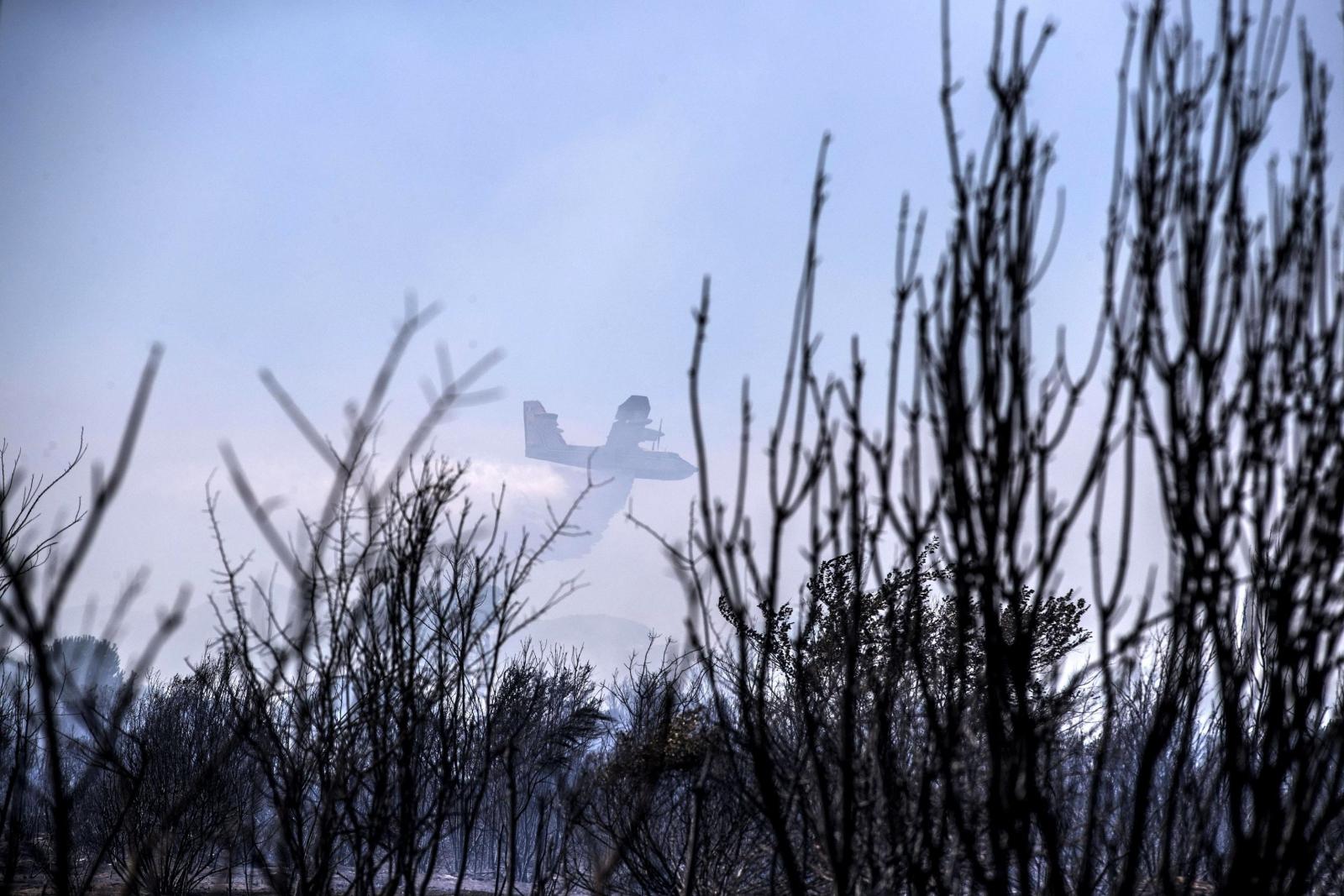 Kolejny dzień pożarów we Włoszech