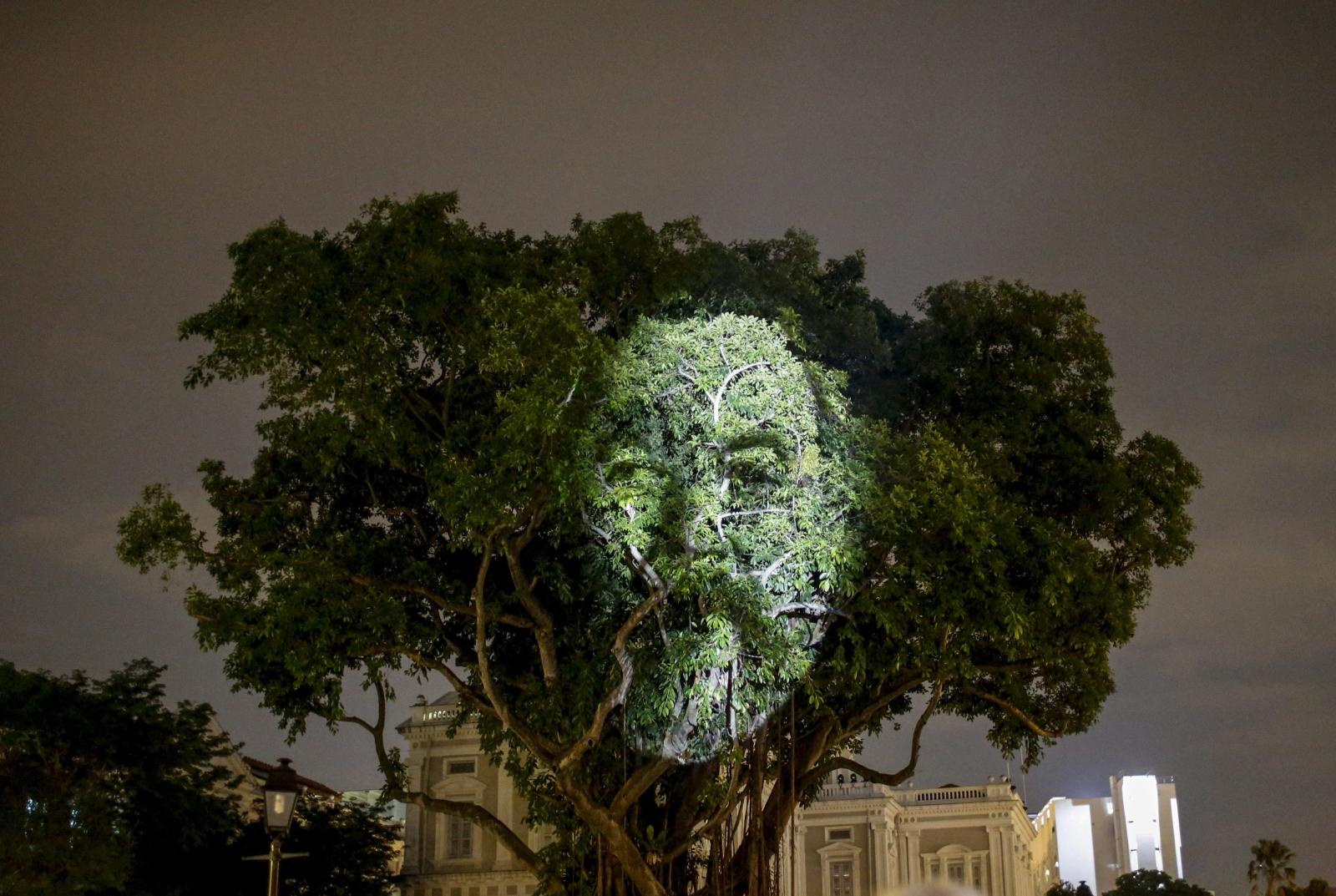 Twarz wyświetlona na drzewie na Festiwalu Sztuki w Singapurze.