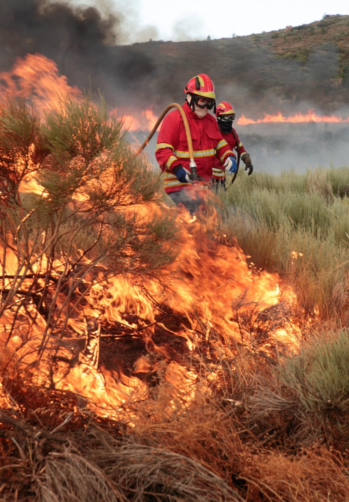 Pożary w Hiszpanii EPA/MIGUEL PEREIRA DA SILVA