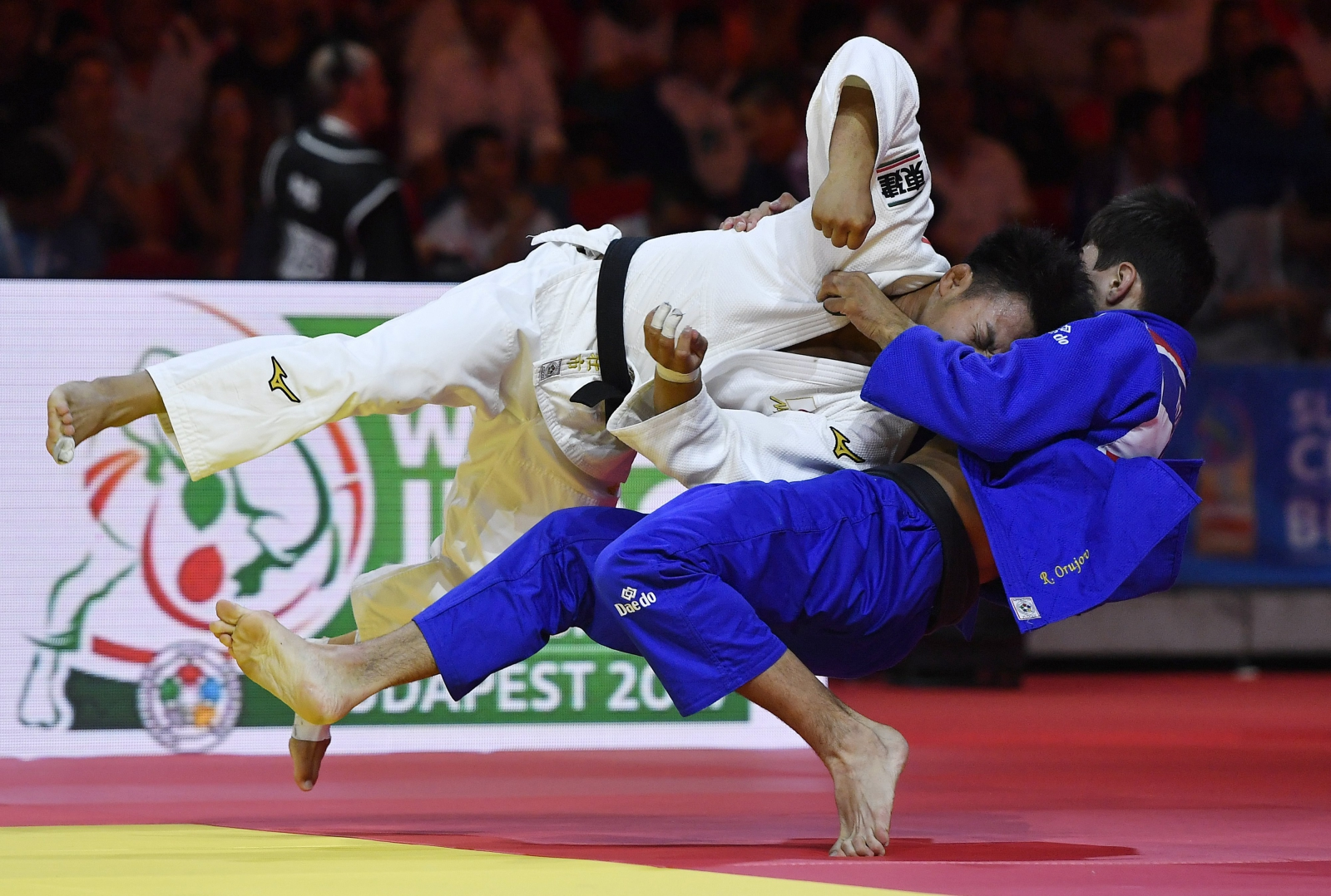 Mistrzostwa Świata w Judo, Budapeszt, Węgry