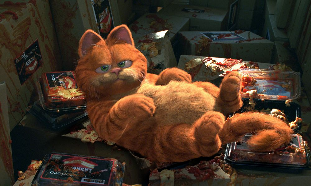 <p>Koty, może zwłaszcza te z kreskówek, budzą powszechną sympatię. Sprawdź czy znasz te futrzaki!</p>