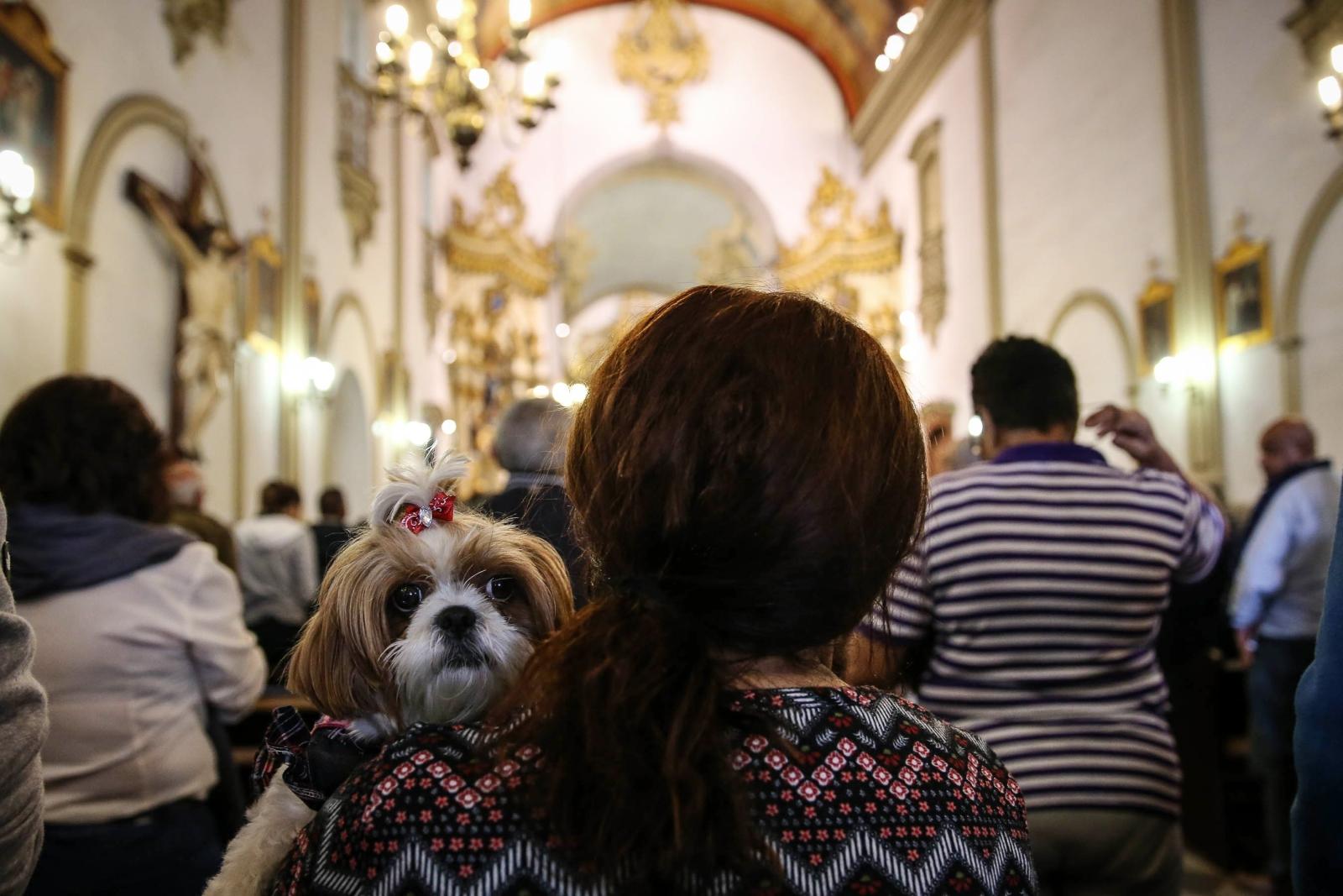 Kobieta z psem uczestniczy we Mszy w święto Świętego Franciszka, Sao Paulo, Brazylia.