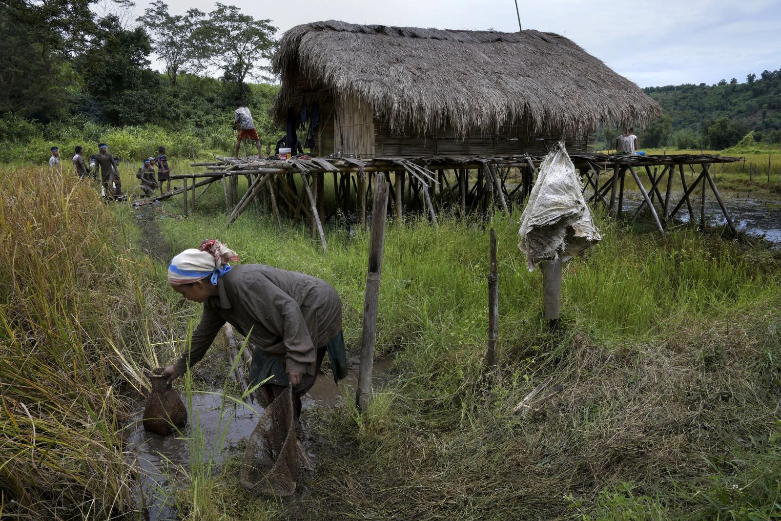 Kobieta z plemienia Tawi czyści sieci po połowie, Indie.