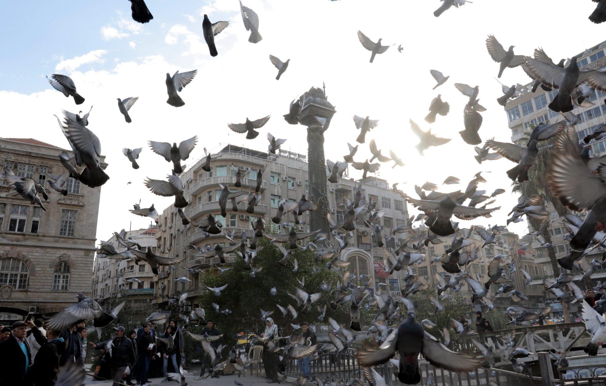 Syria, Damaszek: W trwających nalotach syryjskich sił rządowych na Wschodnią Gutę zginęło we wtorek 49 osób - poinformowało Syryjskie Obserwatorium Praw Człowieka z siedzibą w Londynie. W poniedziałek ataki spowodowały śmierć 127 cywilów, w tym co najmniej 20 dzieci, fot: Youssef Badawi, PAP/EPA