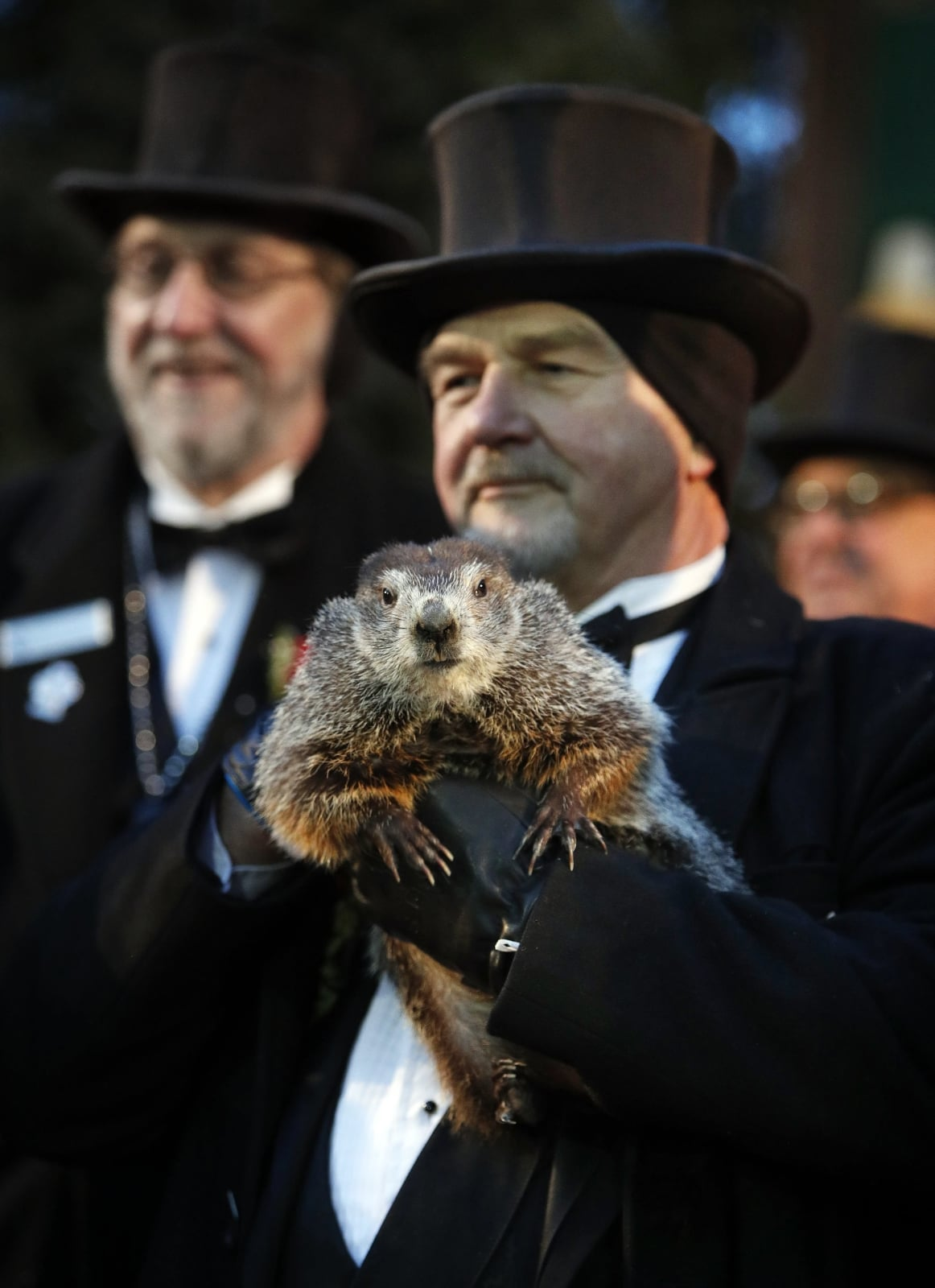 epa06492180 Groundhog Club co-handler John Grifiths holds Punsxutawney Phil the weather prognosticating groundhog during the Groundhog Day celebration at Gobblers Knob in Punxsutawney, Pennsylvania, USA, 02 February 2018. Phil saw his shadow and predicted six more weeks of winter.  EPA/DAVID MAXWELL Dostawca: PAP/EPA.