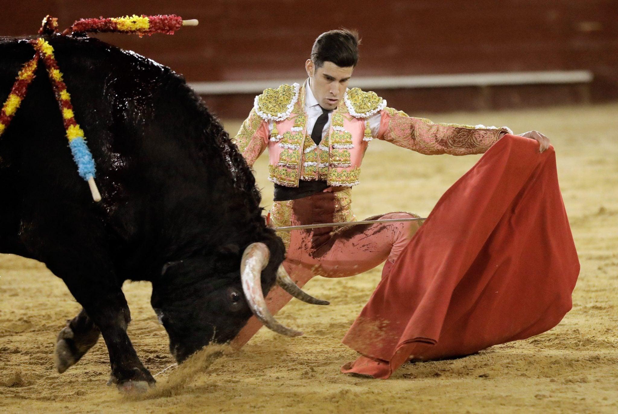 Hiszpański torreador podczas jego występu w Walencji, fot: Juan Carlos Cardenas, PAP/EPA