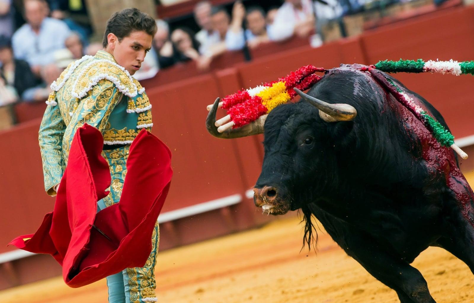 Hiszpański torreador Gines Marin w czasie walki z bykiem, Sewilla, Hiszpania.