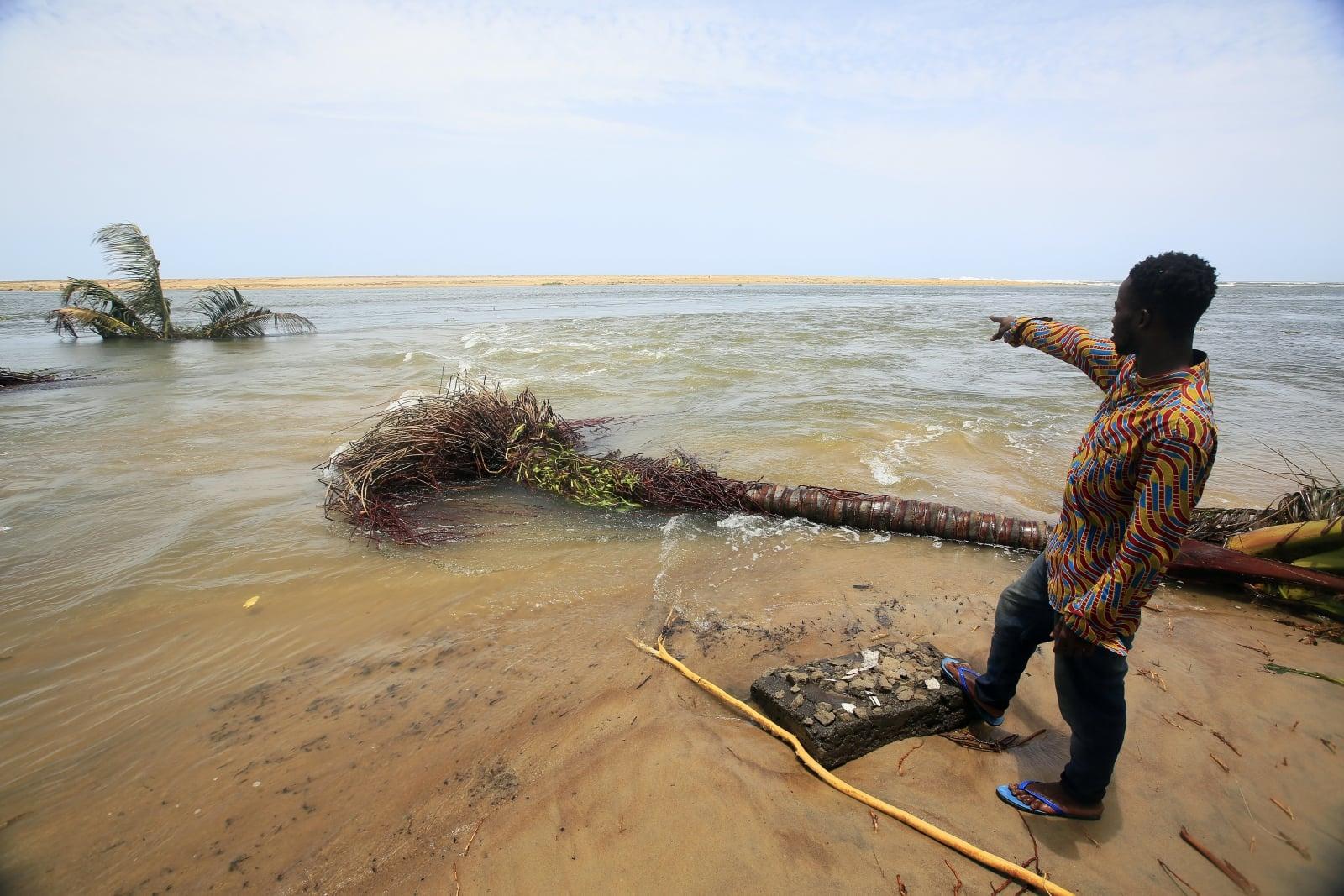 Wybrzeże Kości Słoniowej fot. EPA/LEGNAN KOULA