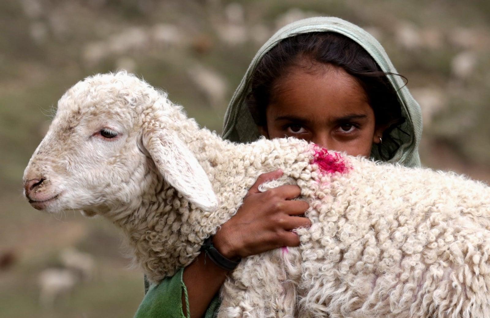 Nomadzi w Indiach fot. EPA/JAIPAL SINGH