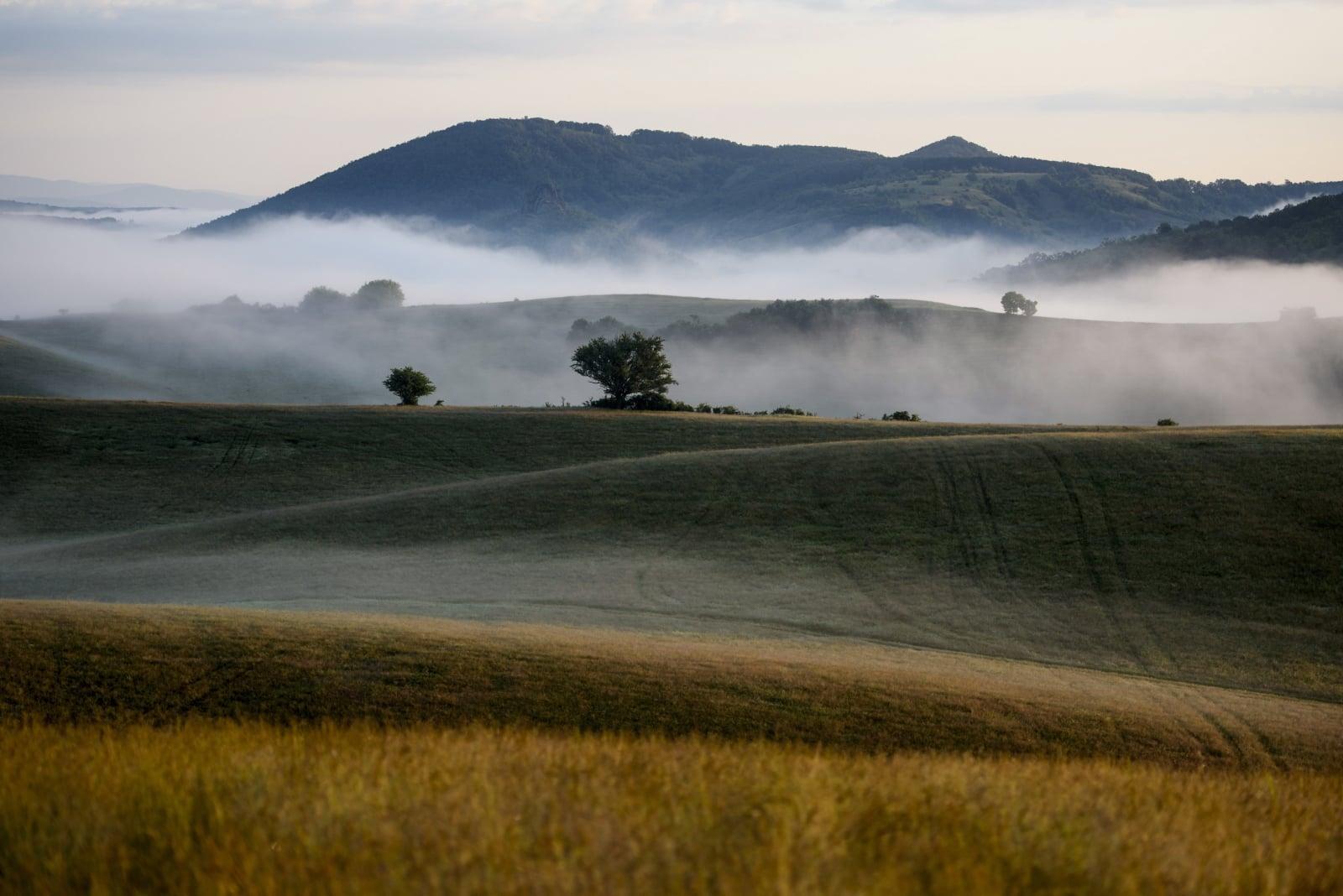 Poranna mgła unosząca się w pobliżu wioski Stara Basta, Słowacja, fot. EPA/PETER KOMKA
