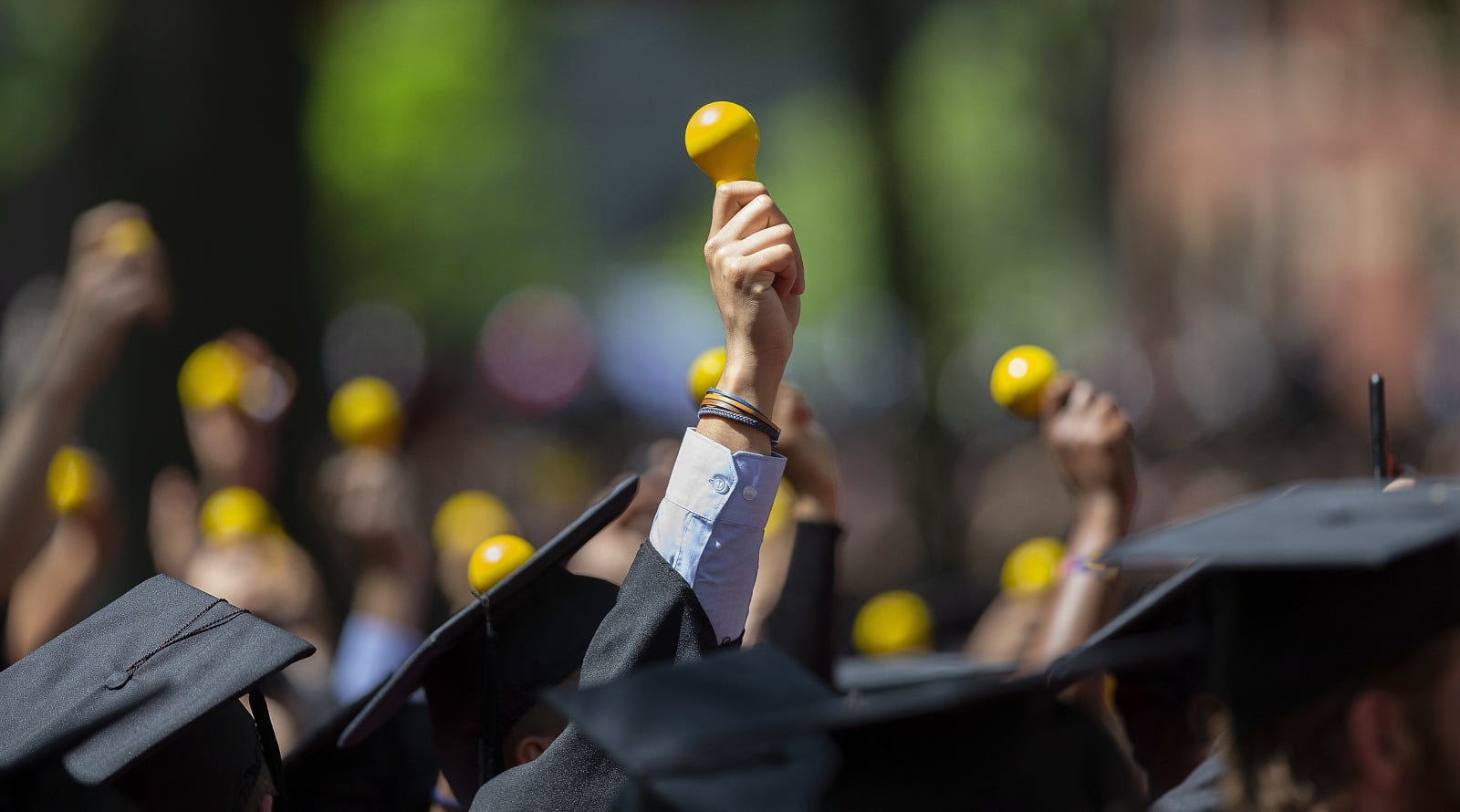 Wręczenie dyplomów na Harvardzie EPA/CJ GUNTHER