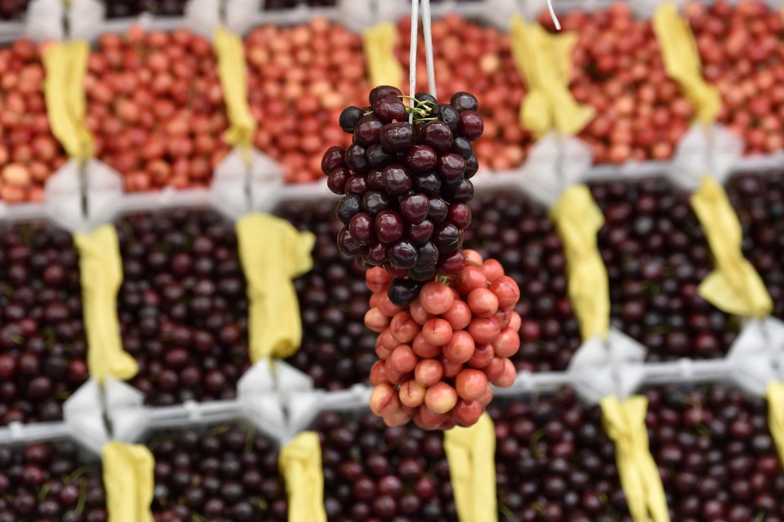 Tradycyjne wiśnie z Lebanonu EPA/WAEL HAMZEH Dostawca: PAP/EPA.