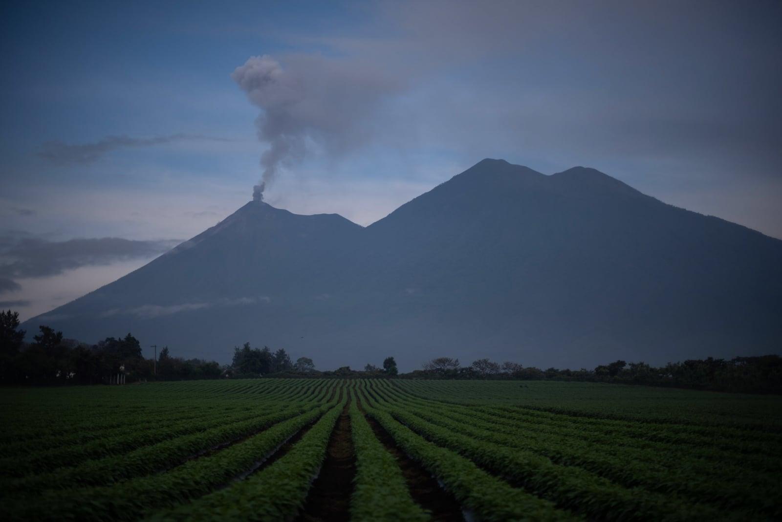 Wulkan Fuego w La Reunion w Gwatemali, który wybuchł 3 czerwca i zabił co najmniej 114 osób, fot. EPA/SANTIAGO BILLY