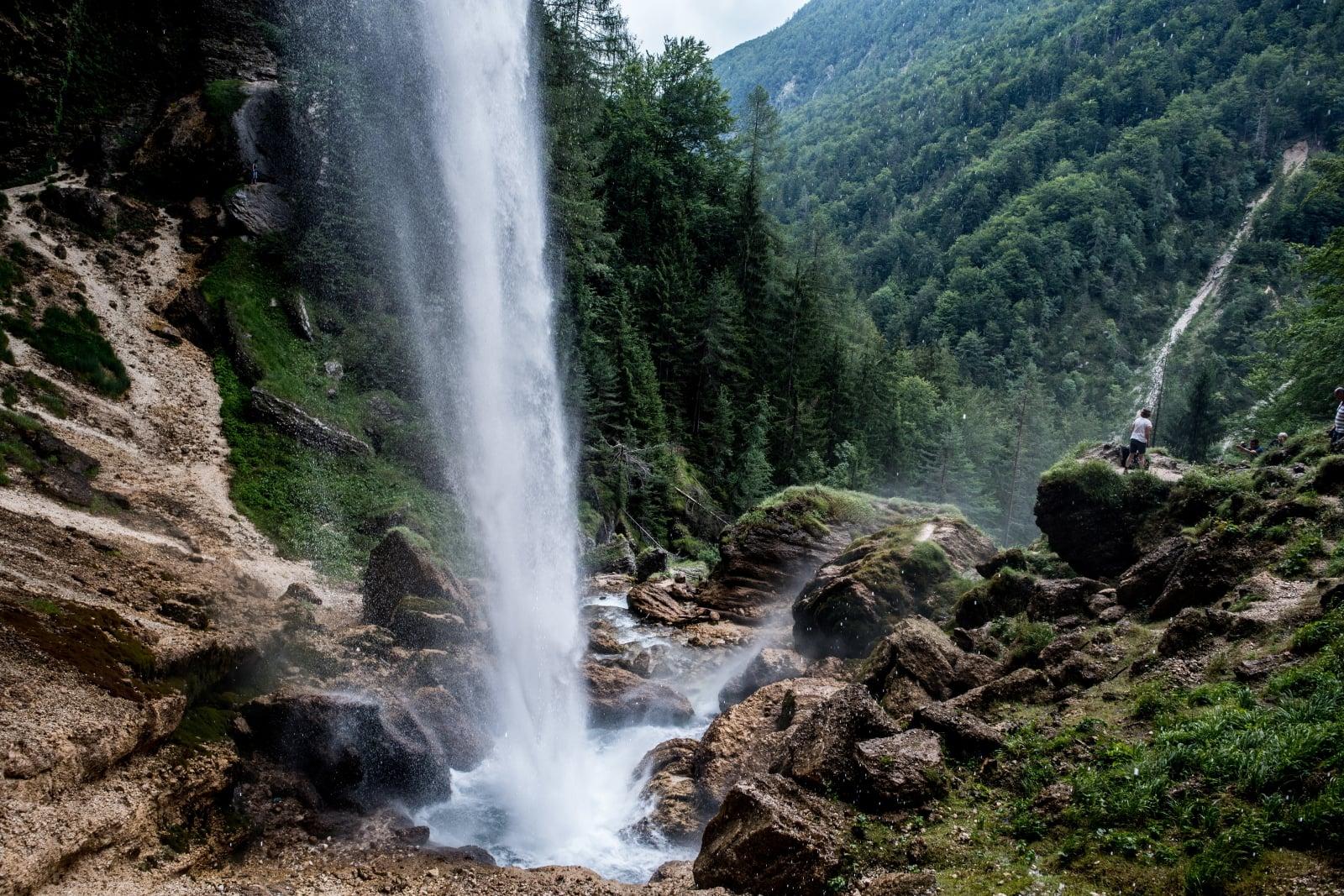 Przyroda w Słowenii fot. EPA/FILIP SINGER