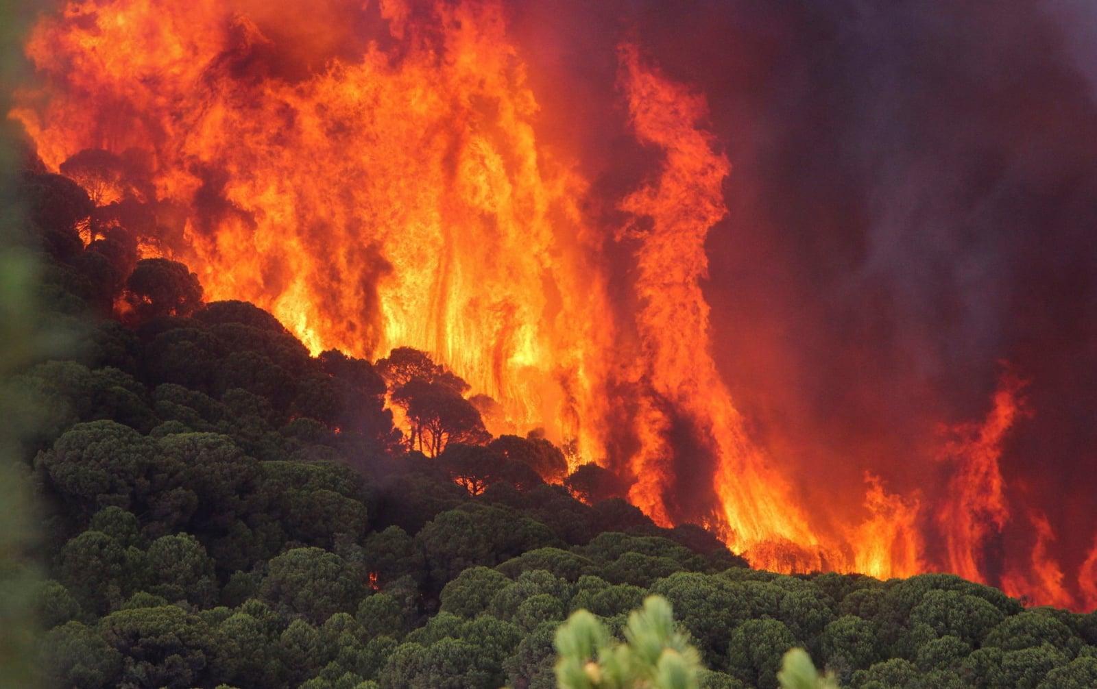 Pożar w Nerva, Huelva, Andaluzja, południowa Hiszpania, fot. EPA/JULIAN PEREZ