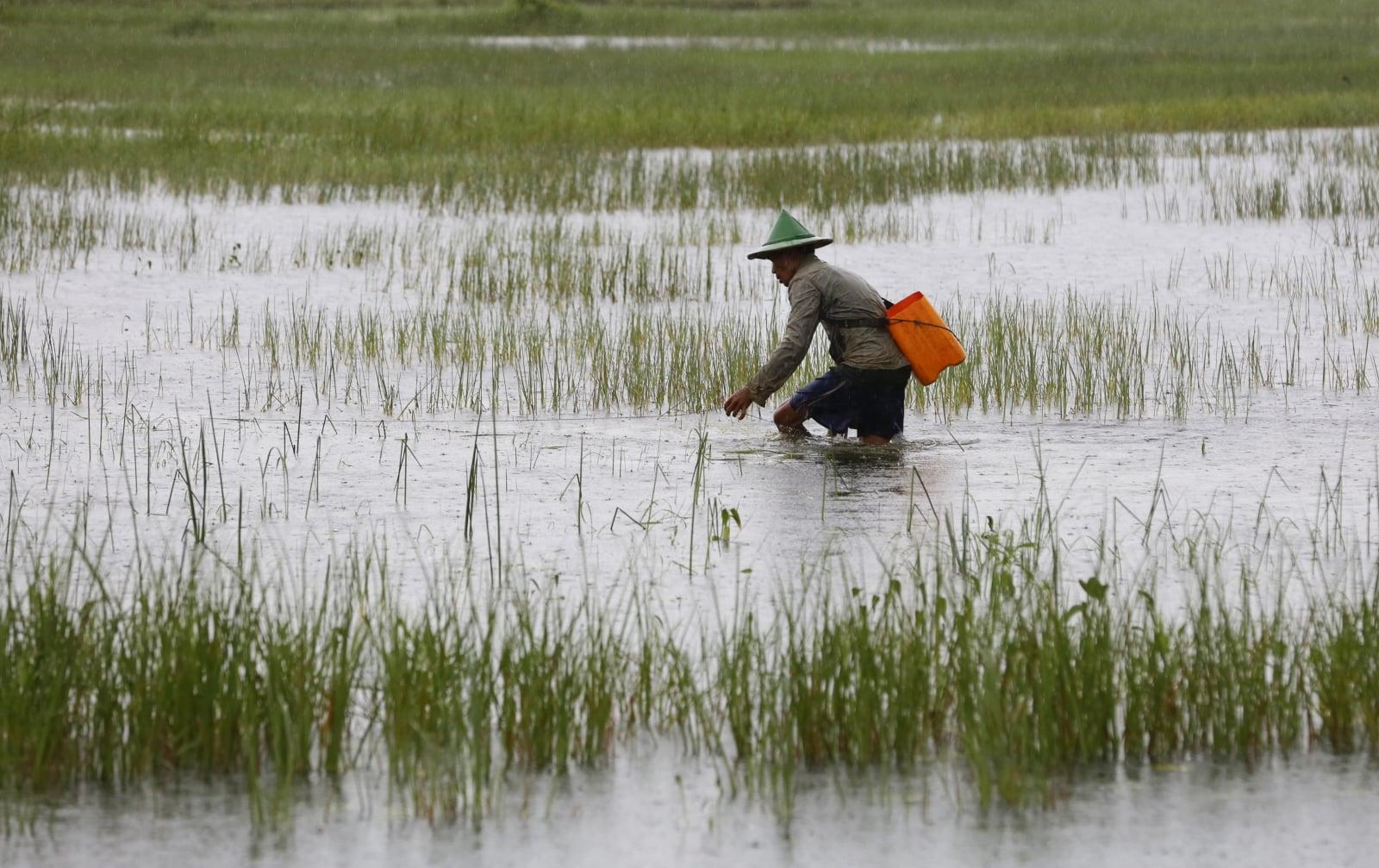 Powodzie w Mjanmnie. fot. EPA/LYNN BO BO