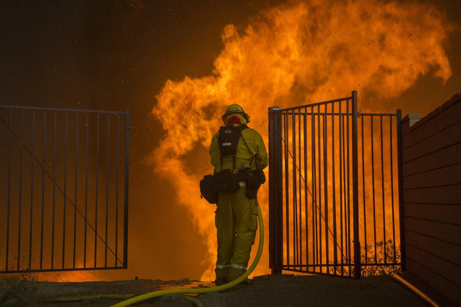 Pożary w Kalifornii  EPA/DAVID MCNEW