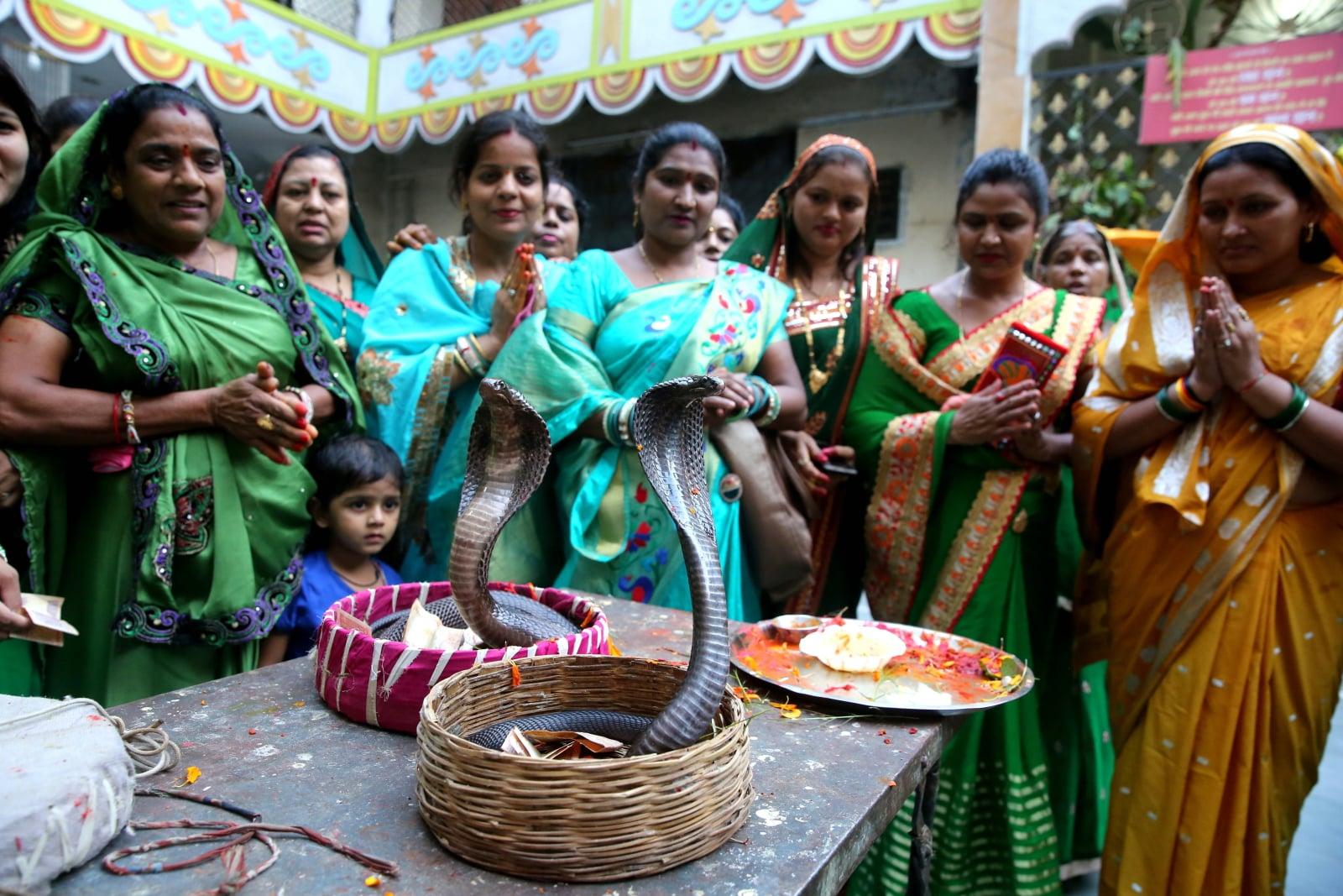 Indyjski festiwal Nagpanchami fot.   EPA/SANJEEV GUPTA