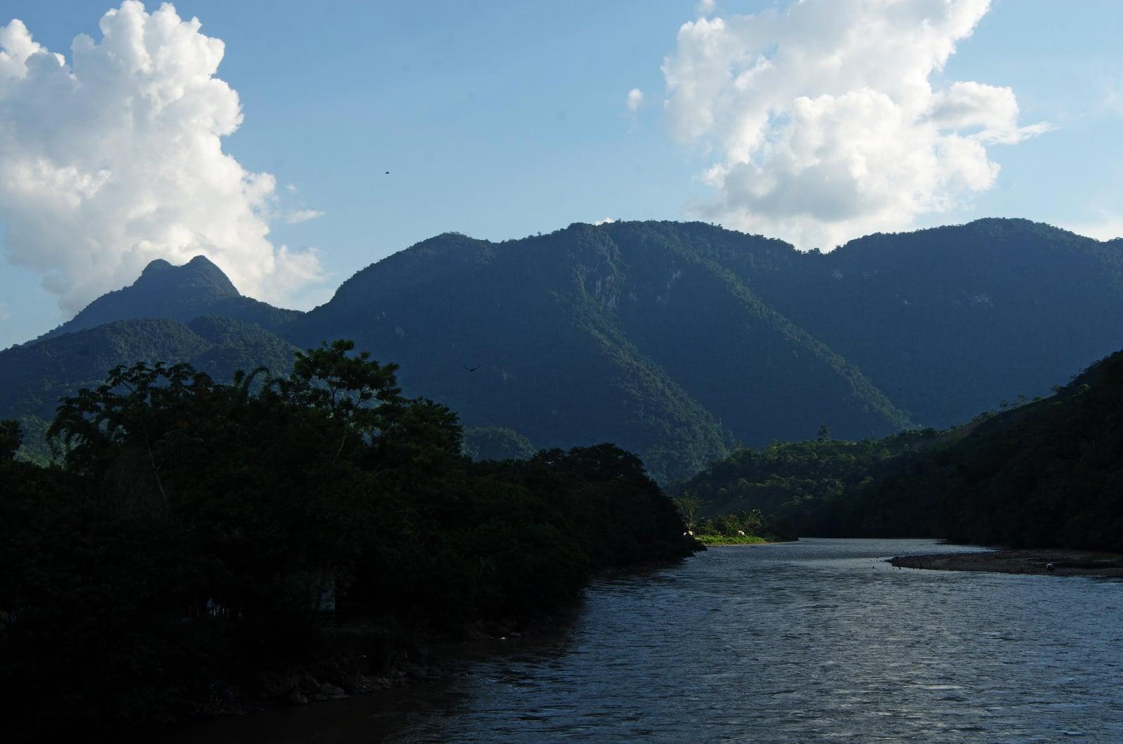 Nowy gatunek storczyków odkryty w Peru fot. EPA/SERNANP