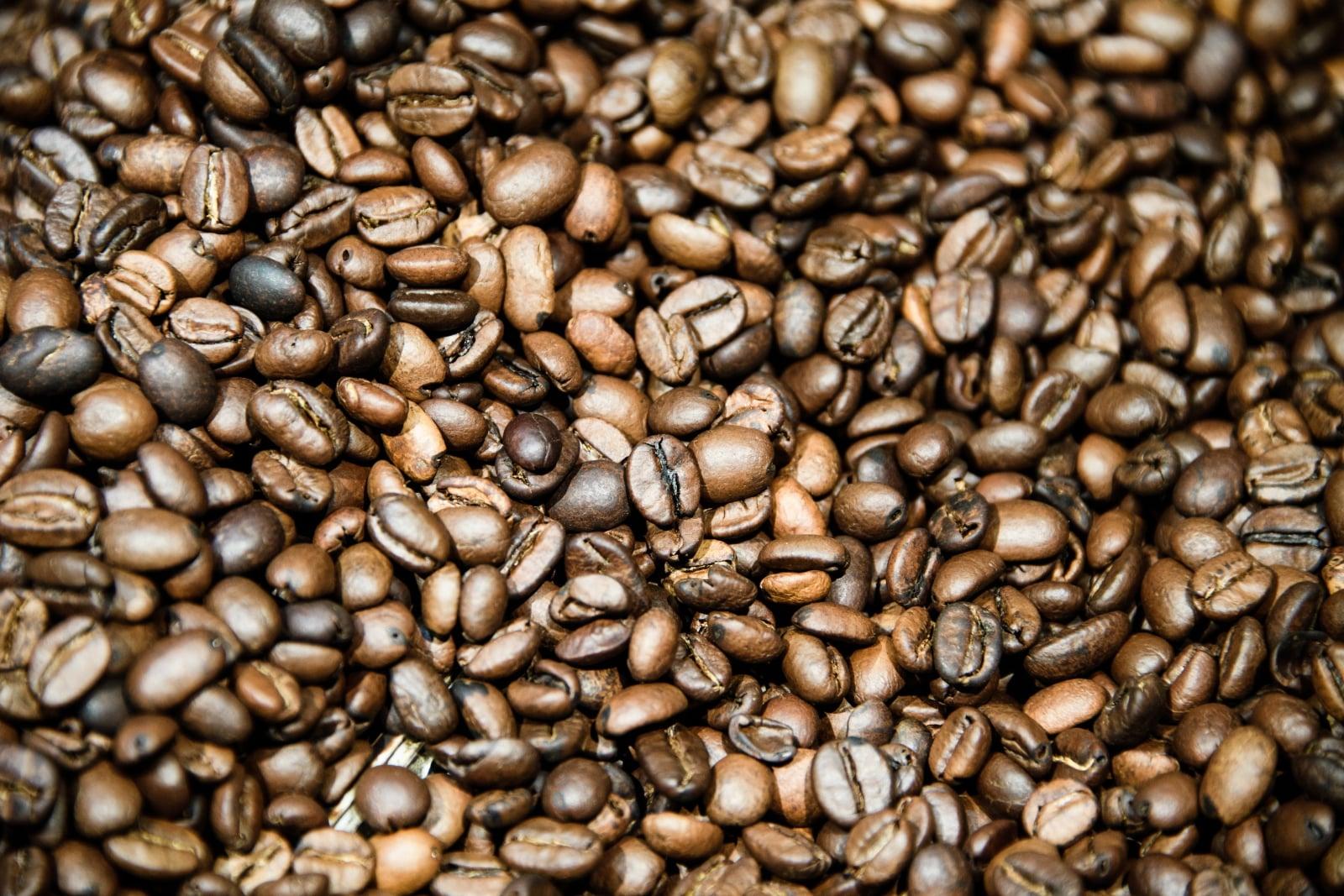 Ziarna kawy Fot. PAP/EPA/CLEMENS BILAN