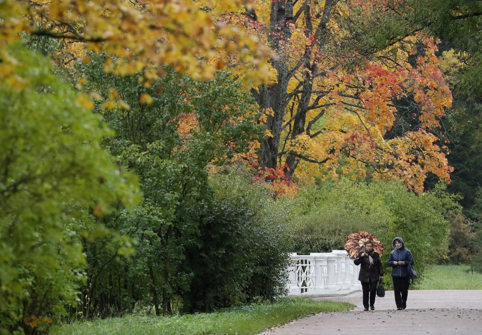 Jesień w Rosji EPA/ANATOLY MALTSEV