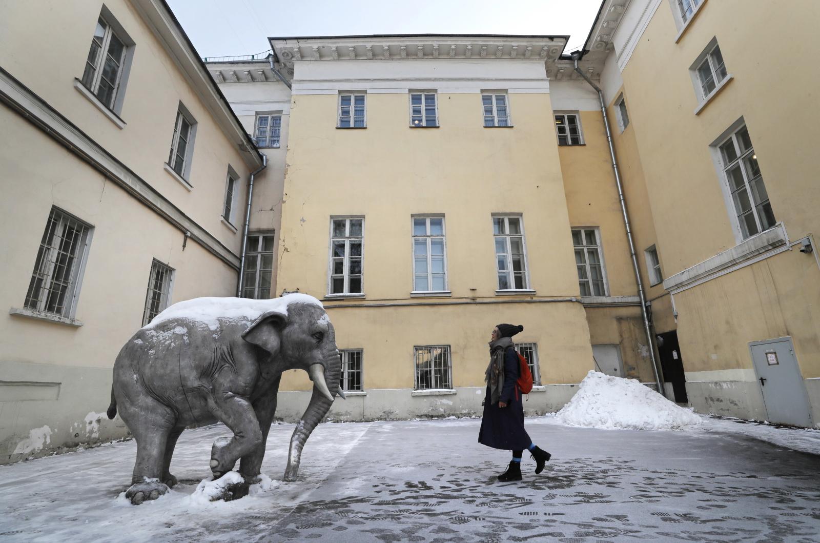 Rzeźba słonia na dziedzińcu jednego z moskiewskich budynków, Rosja. Fot. PAP/EPA/YURI KOCHETKOV