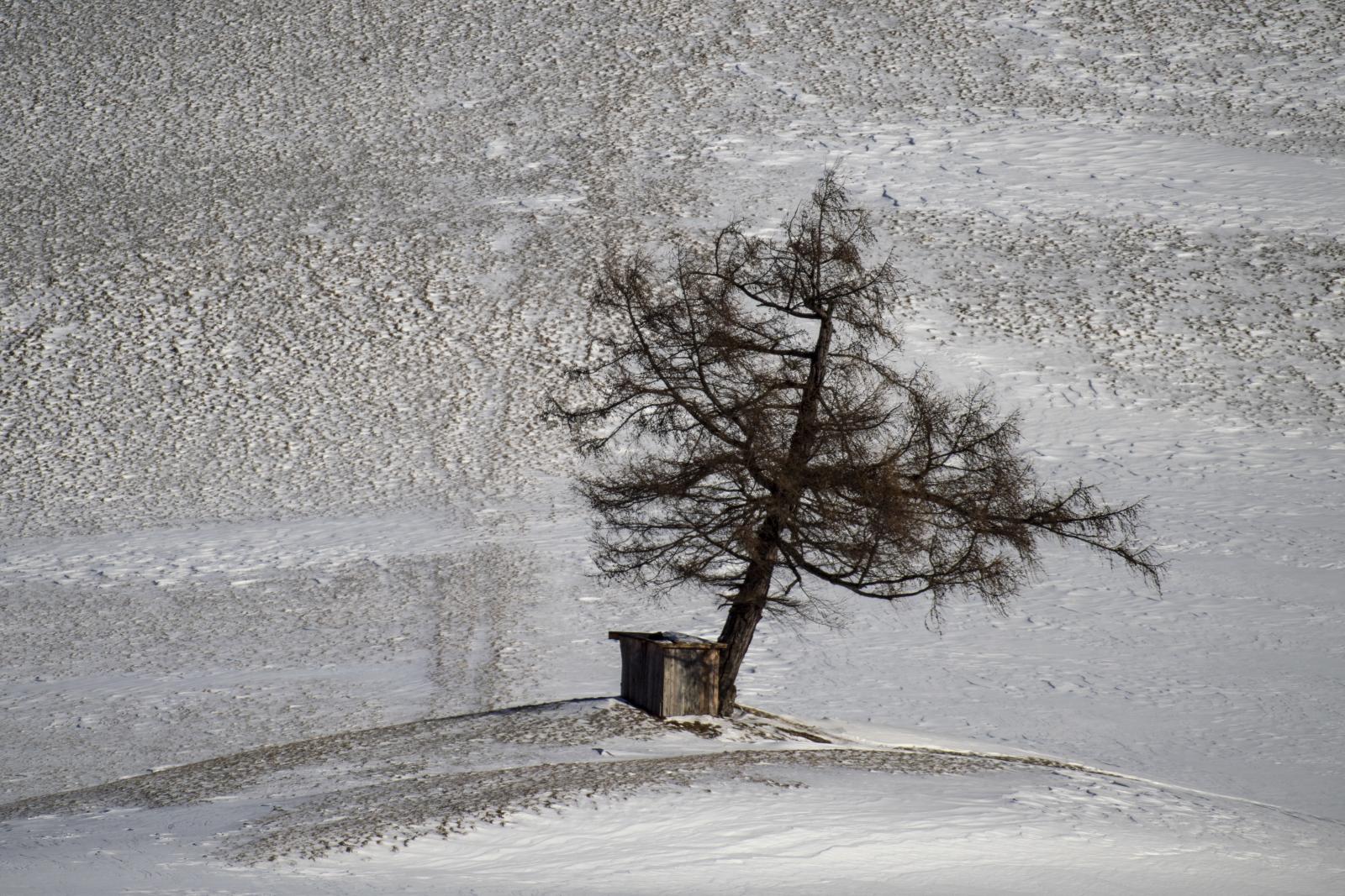 Zima w Austrii. Fot. PAP/EPA/CHRISTIAN BRUNA