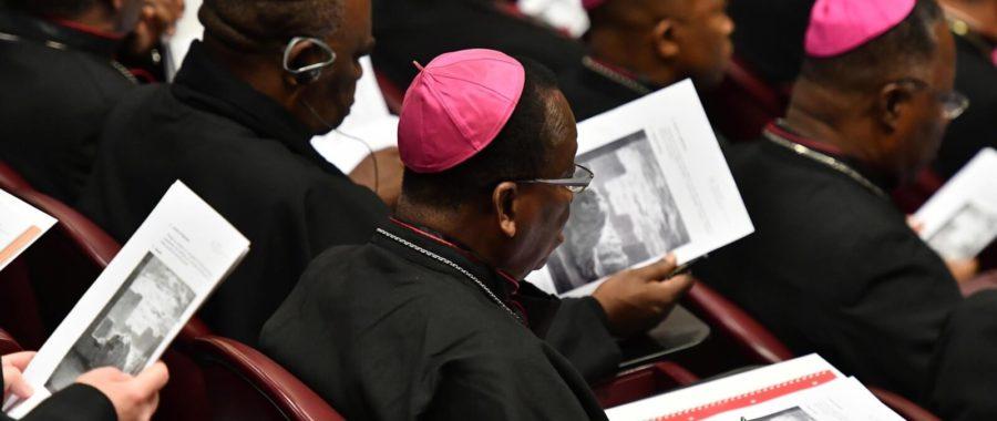 szczyt w watykanie, szczyt na temat ochrony nieletnich, watykan, franciszek, papież franciszek