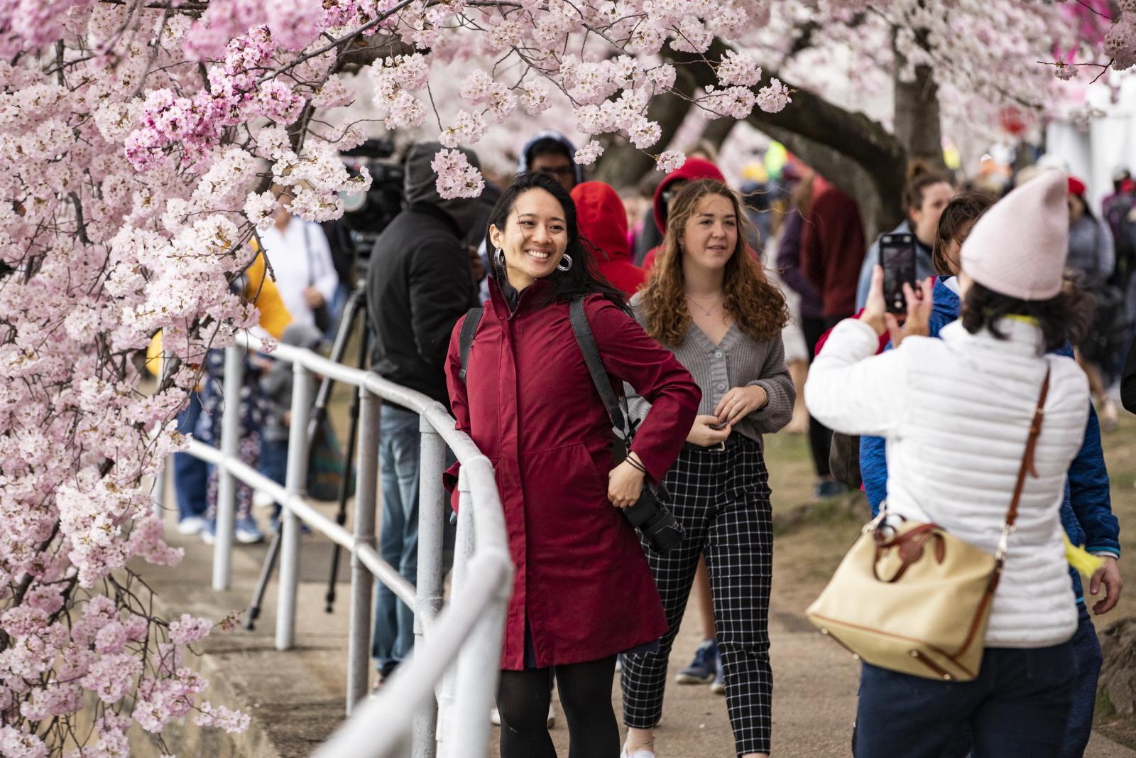 Wiosna w Waszyngtonie. Fot. PAP/EPA/SAMUEL CORUM