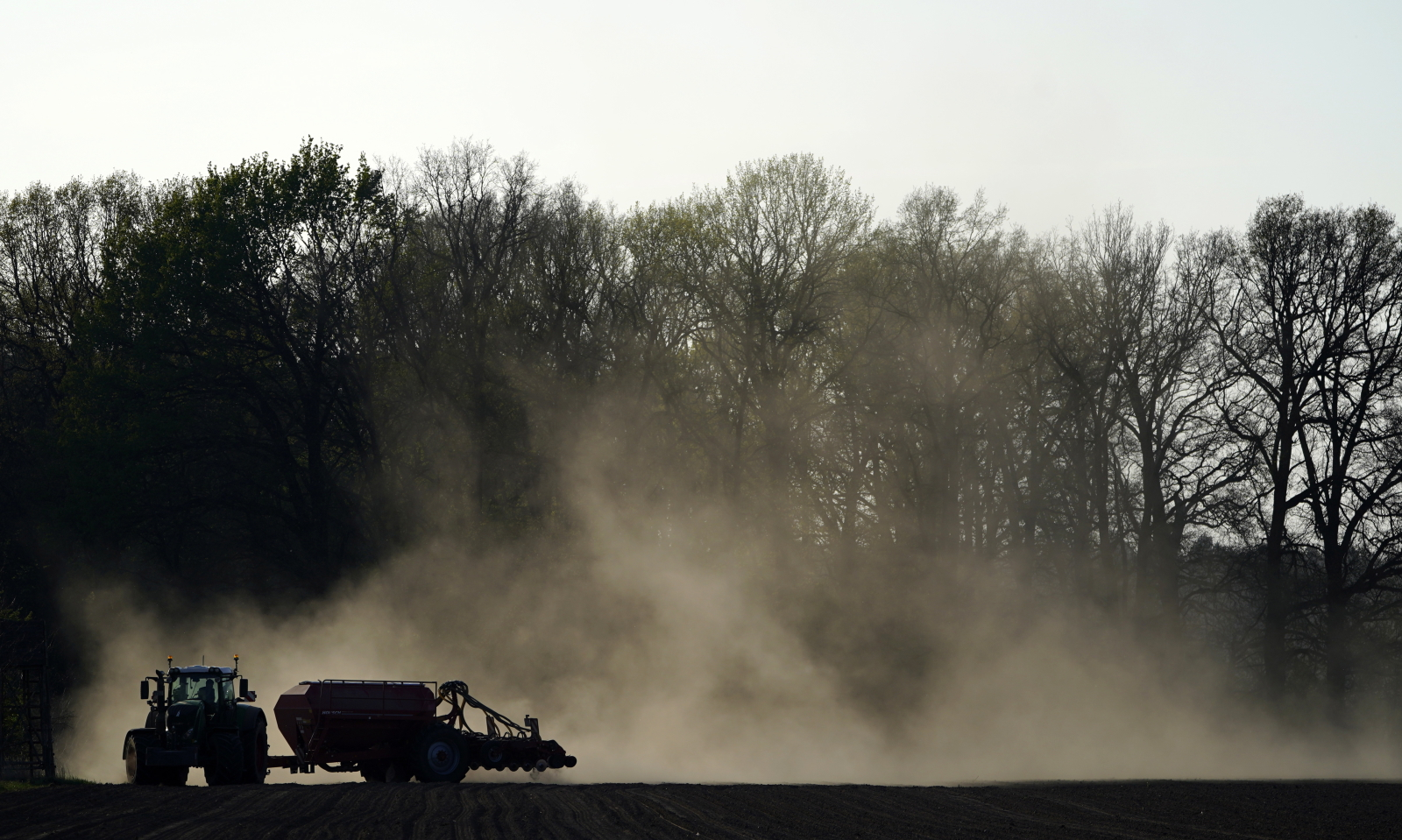 Ogromna susza dotknęła już Brandenburgię/EPA / ALEXANDER BECHER