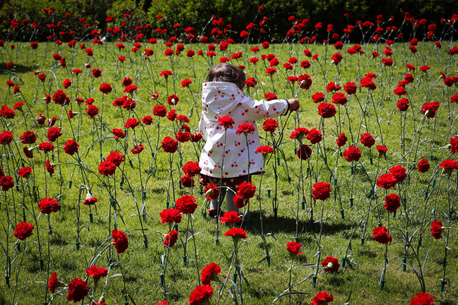 45 rocznica Rewolucji Goździków w Portugalii. Fot. PAP/EPA/ANTONIO COTRIM