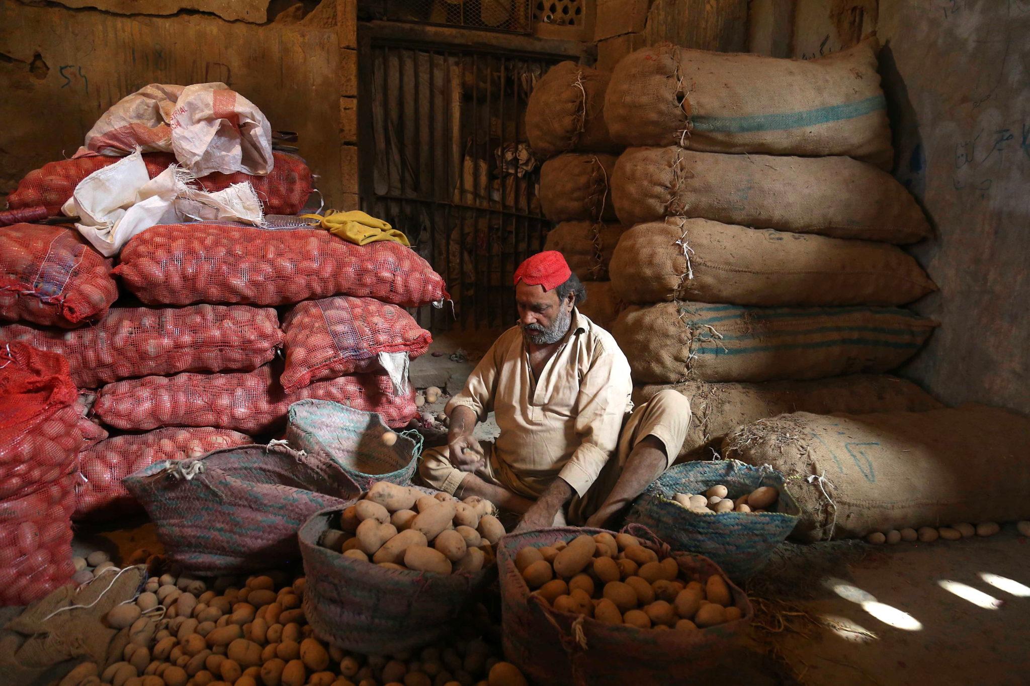 Sortowanie ziemniaków na rynku w Karaczi w Pakistanie, fot. SHAHZAIB AKBER, PAP/EPA.