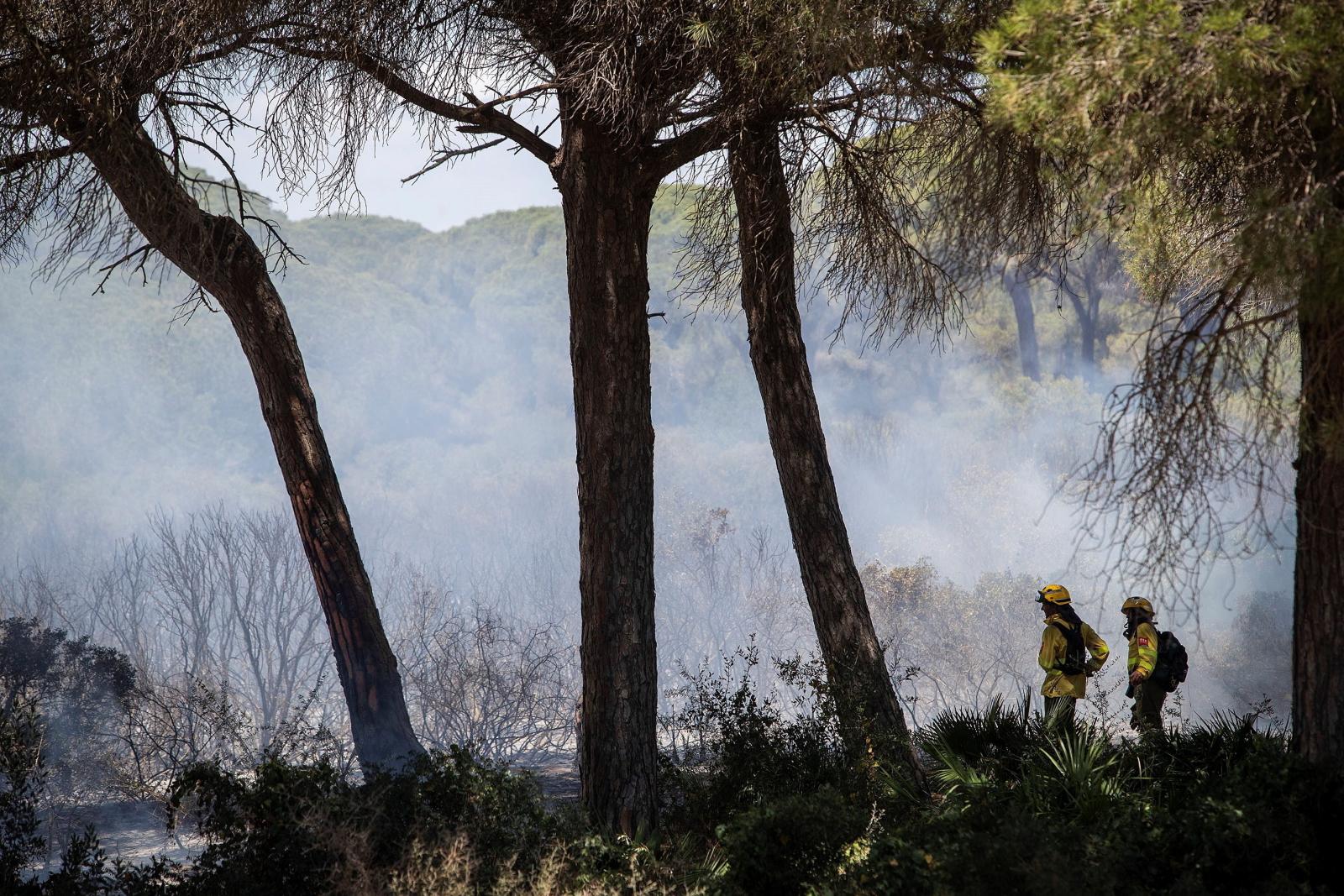 W Andaluzji poważne pożary. Na tych terenach od jakiegoś czasu panuje ogromna susza. Fot. EPA/ROMAN RIOS