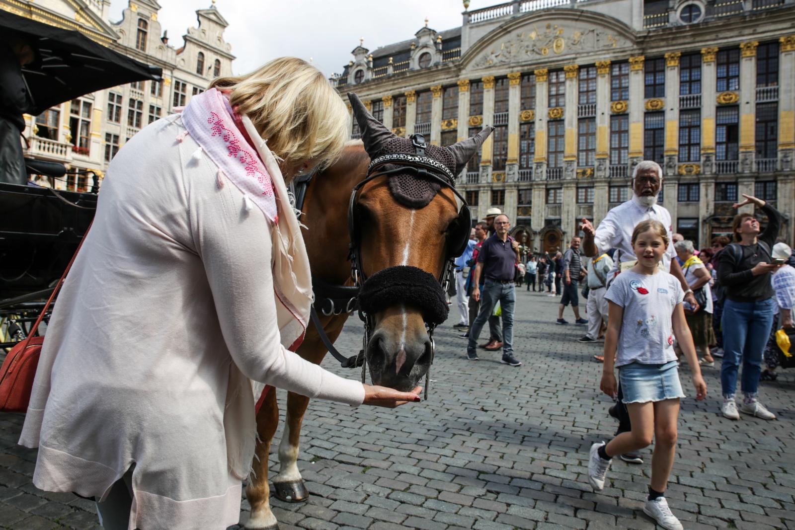 Lato w Brukseli. Fot. PAP/EPA/ARIS OIKONOMOU