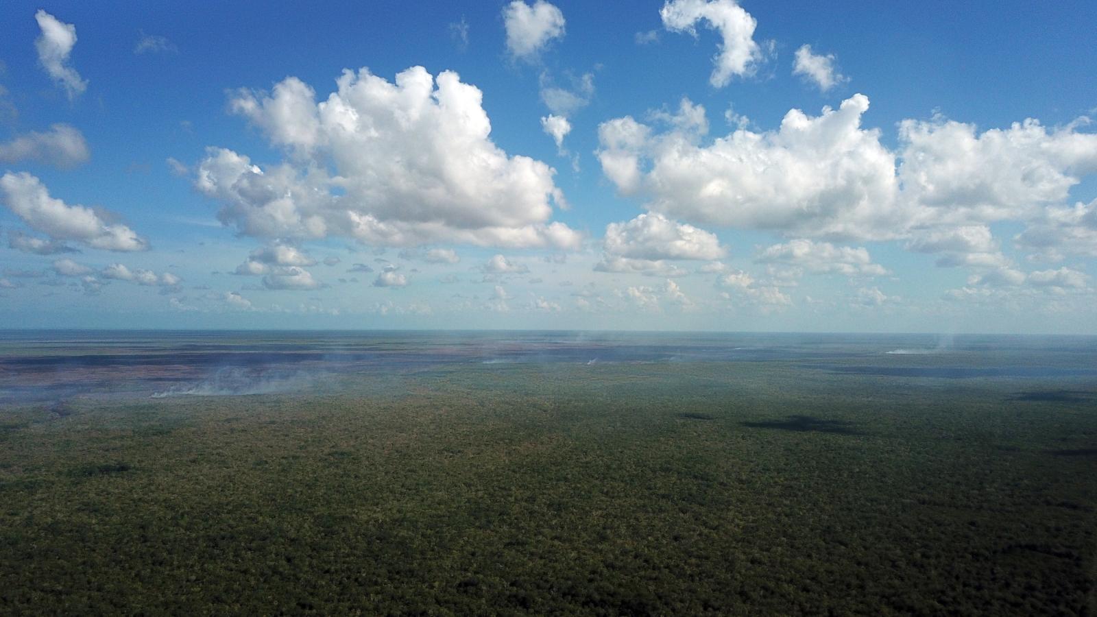 Pożary lasów w Meksyku fot. EPA/Lourdes Cruz