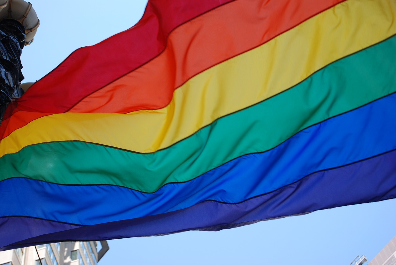 flaga lgbt homoseksualizm