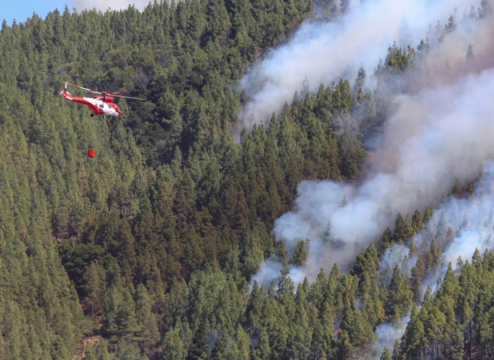 Pożary lasów na Gran Canarii fot. EPA/ELVIRA URQUIJO